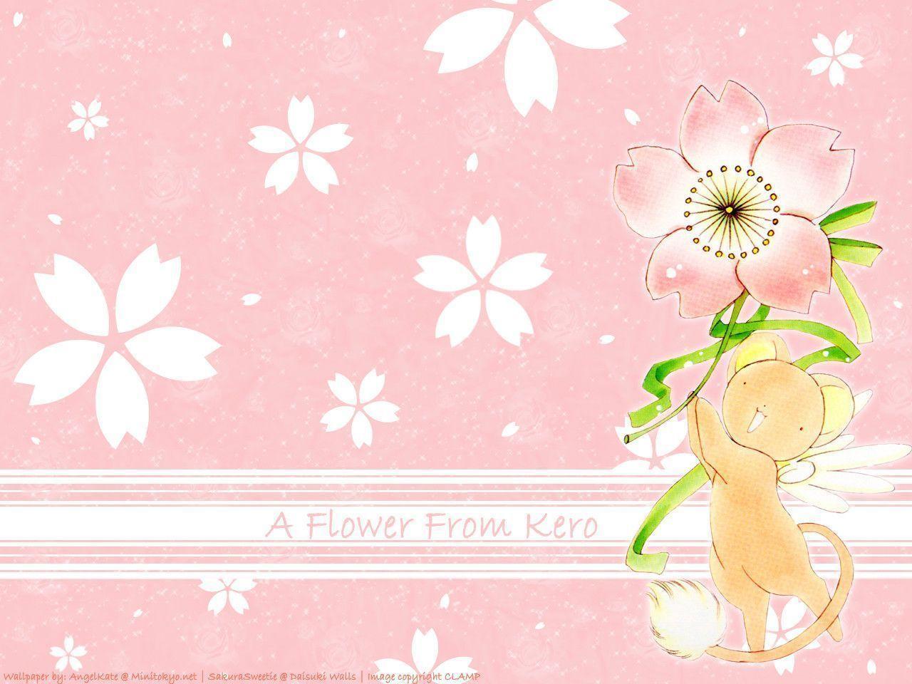 A flower from Kero - Cardcaptor Sakura Wallpaper (5022194) - Fanpop