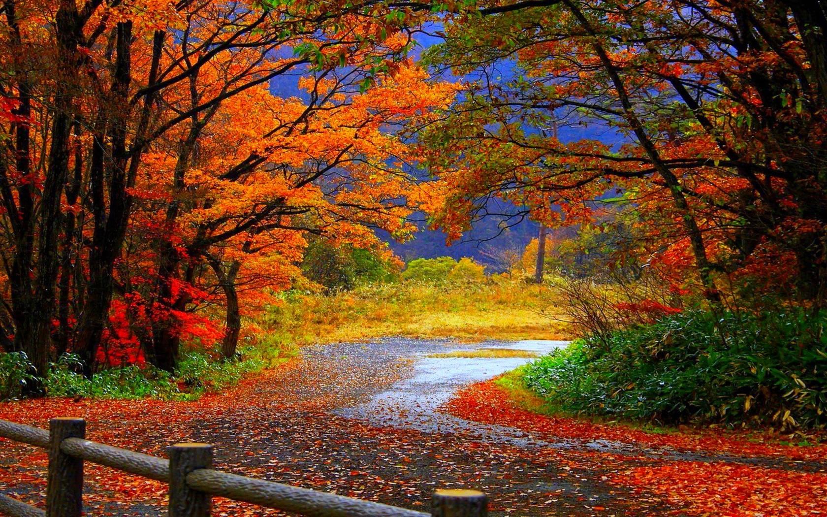 Hd Autumn Wallpapers Inn