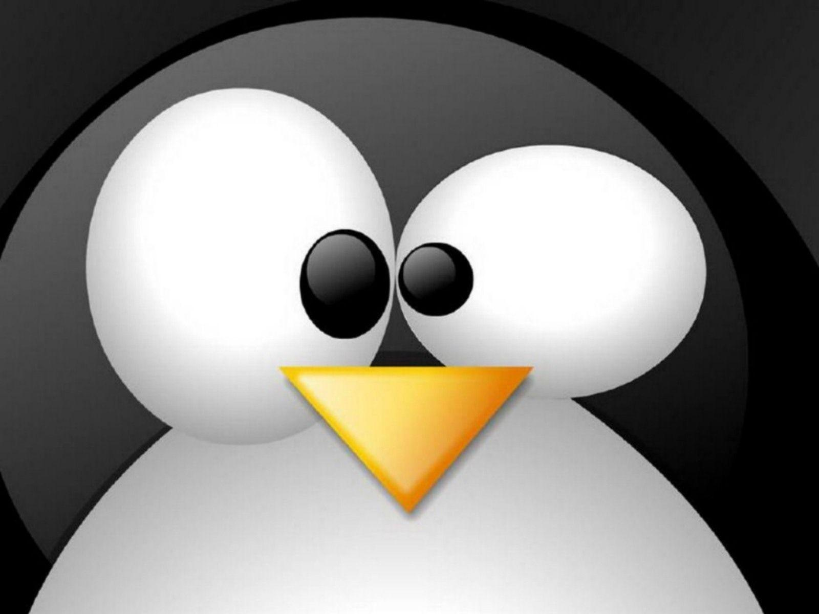 Tux Linux Wallpaper Desktop Backgrounds High Resolution Penguin ...