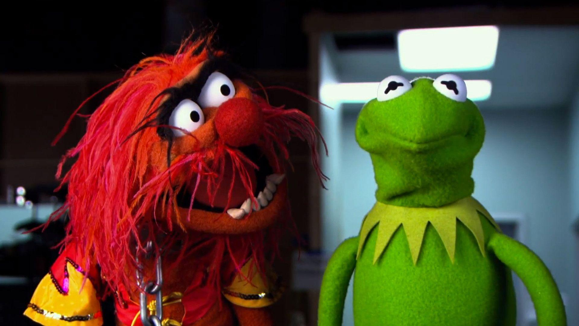 animal muppets wallpaper - photo #5