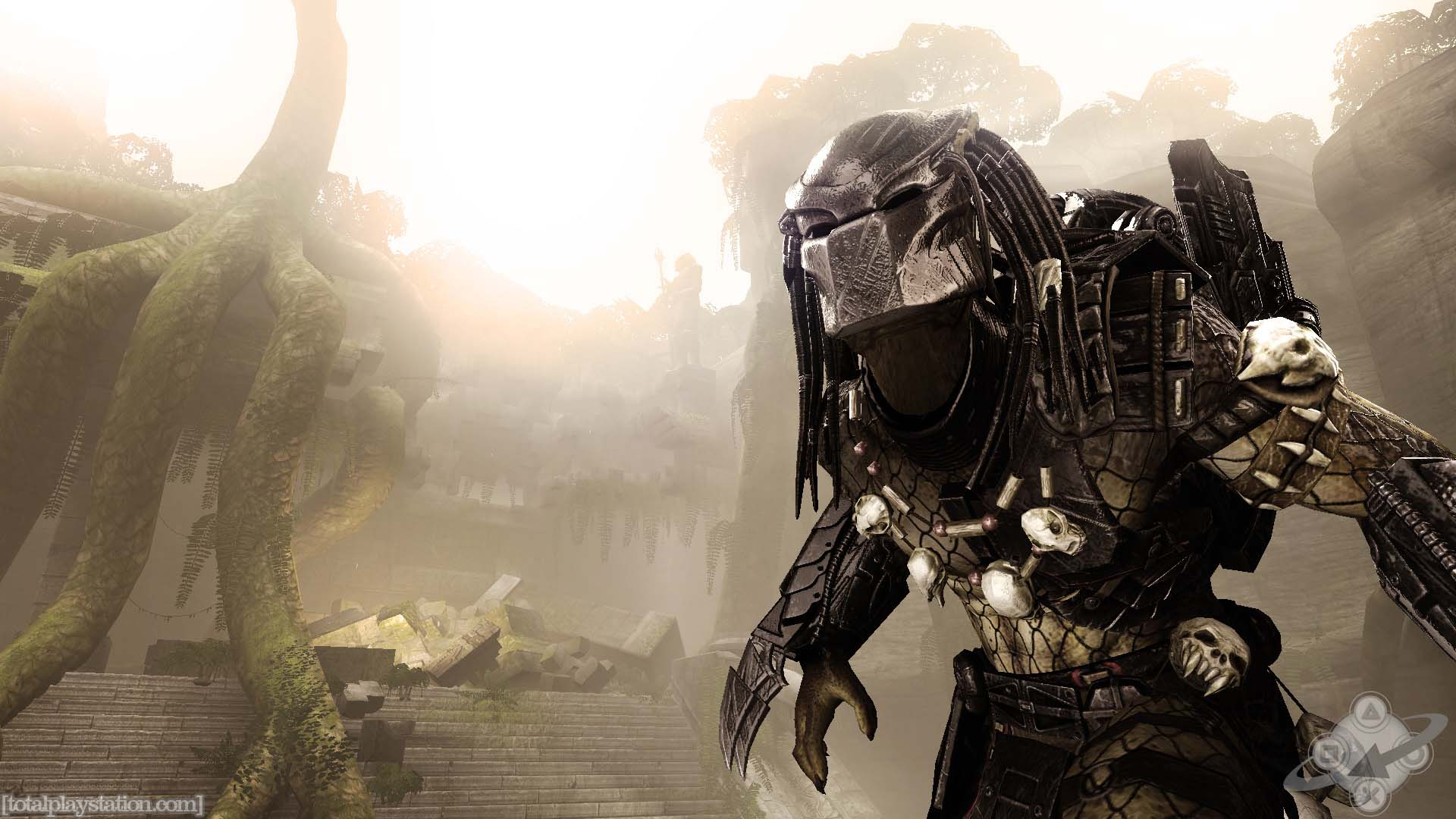 alien vs predator wallpapers - wallpaper cave
