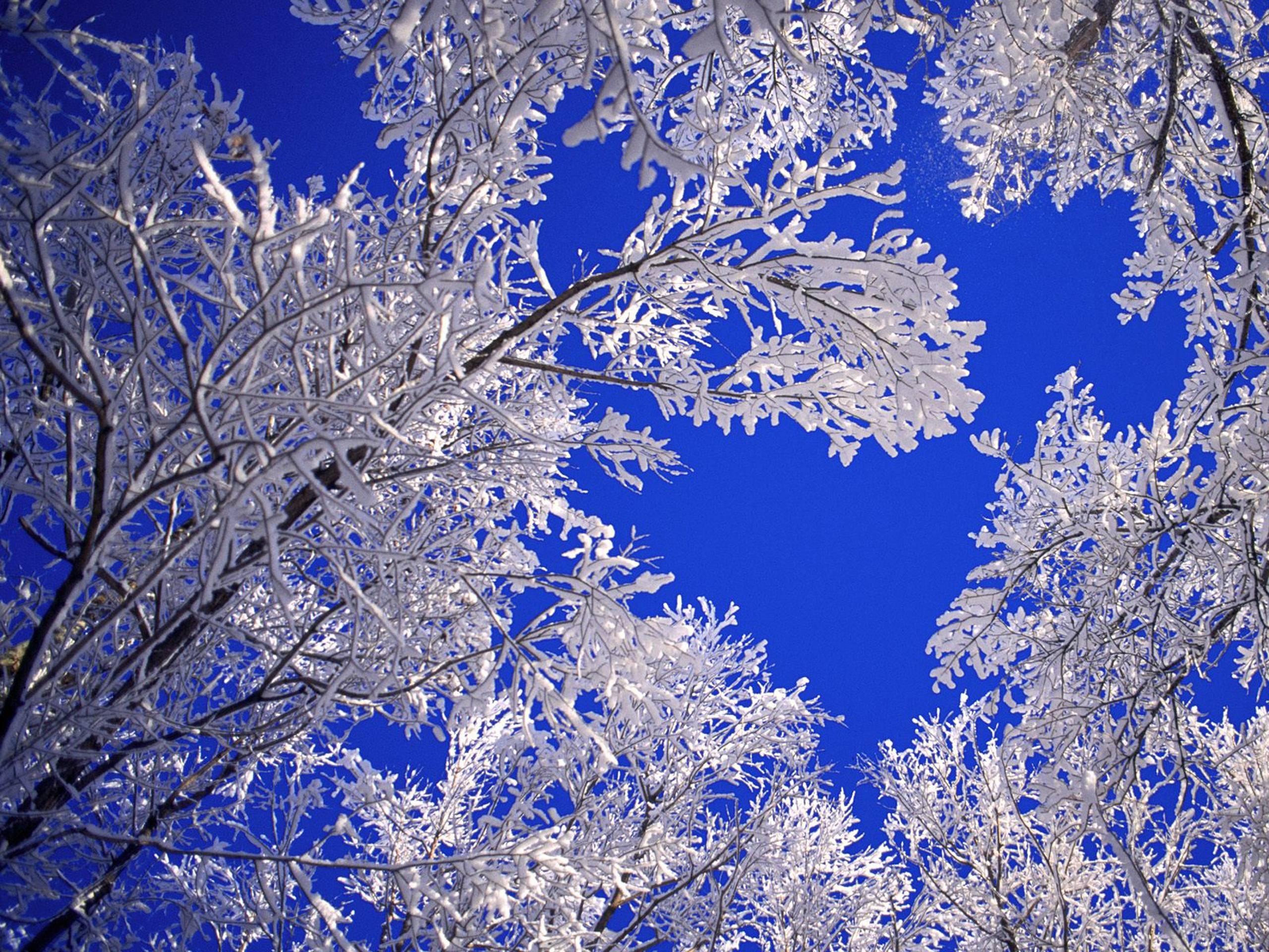 Desktop Wallpapers Winter Scenes - Wallpaper Cave
