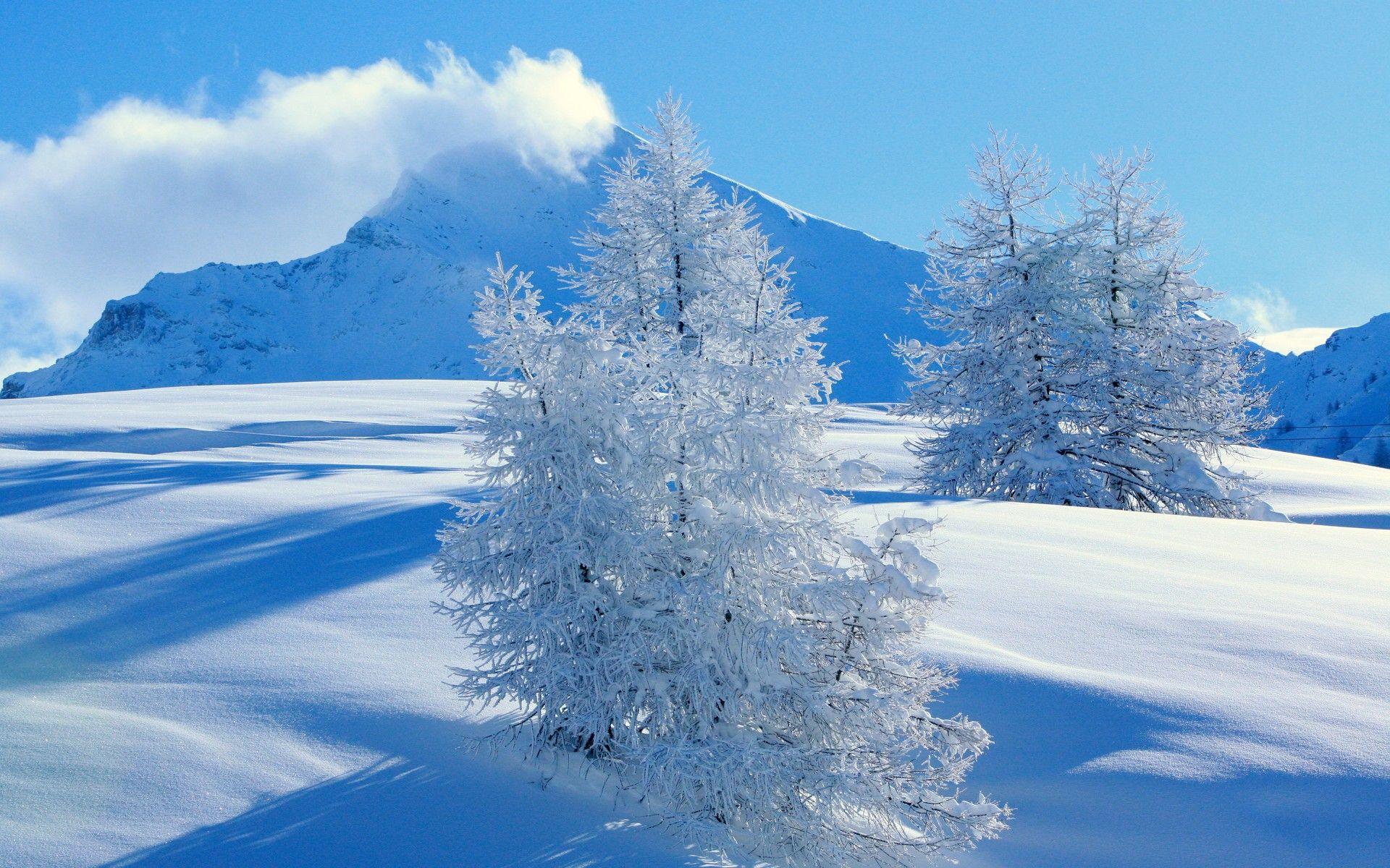 Snow Hd