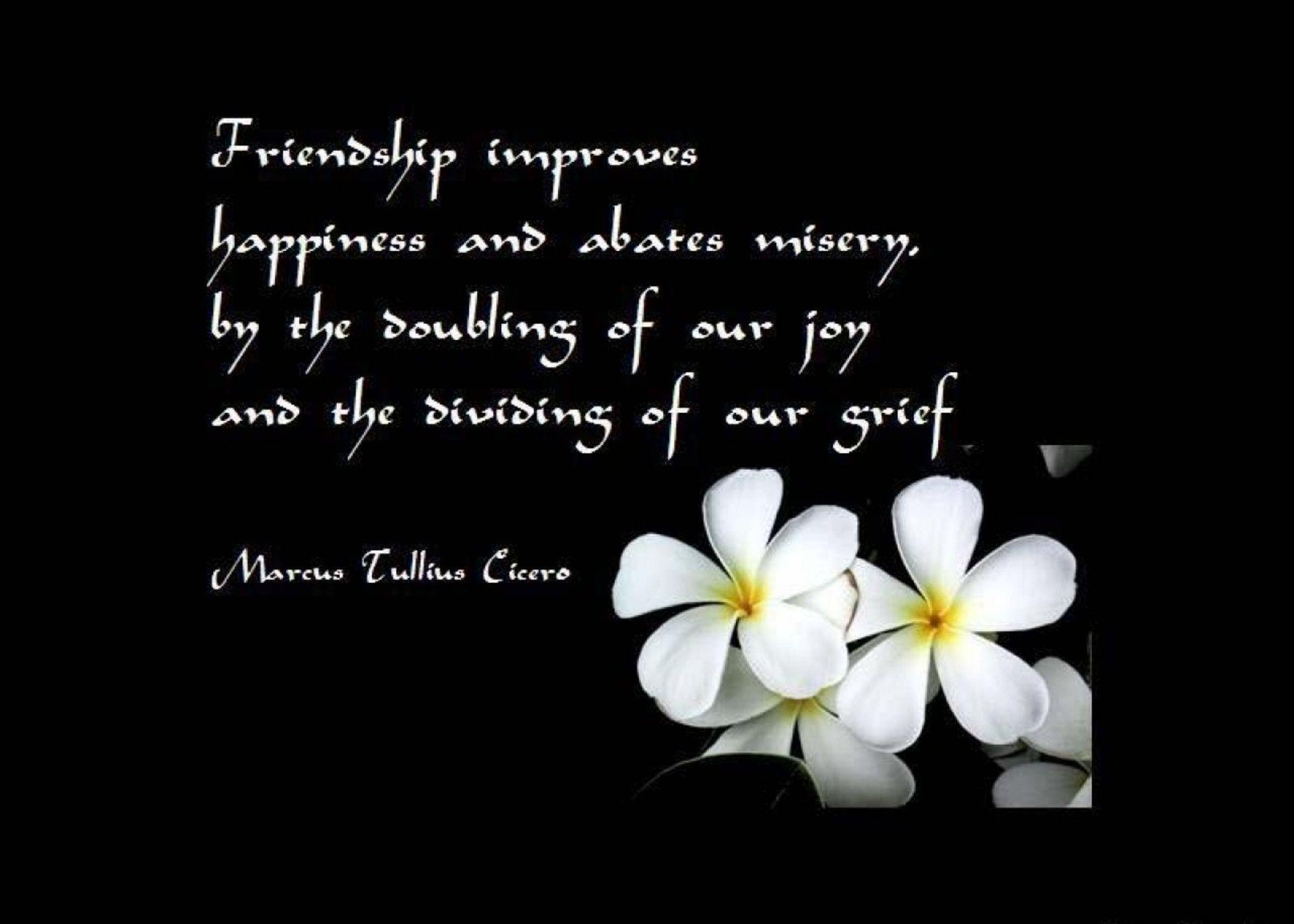 Wallpapers Friendship Wallpaper Cave