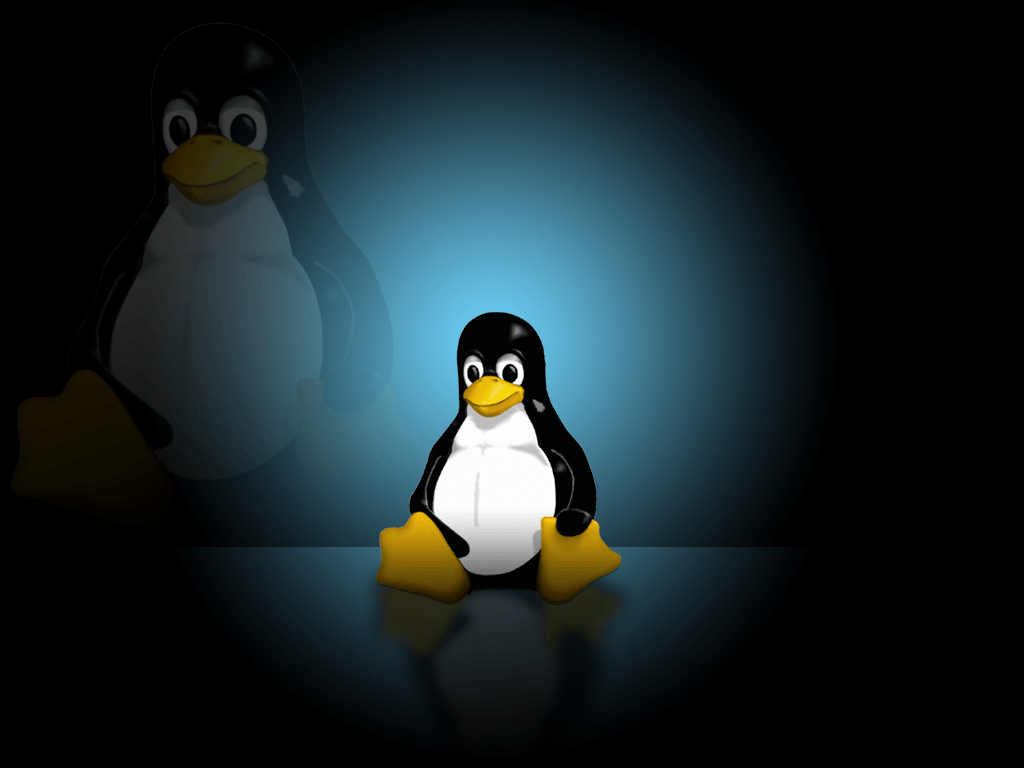fight for linux wallpaper - photo #23