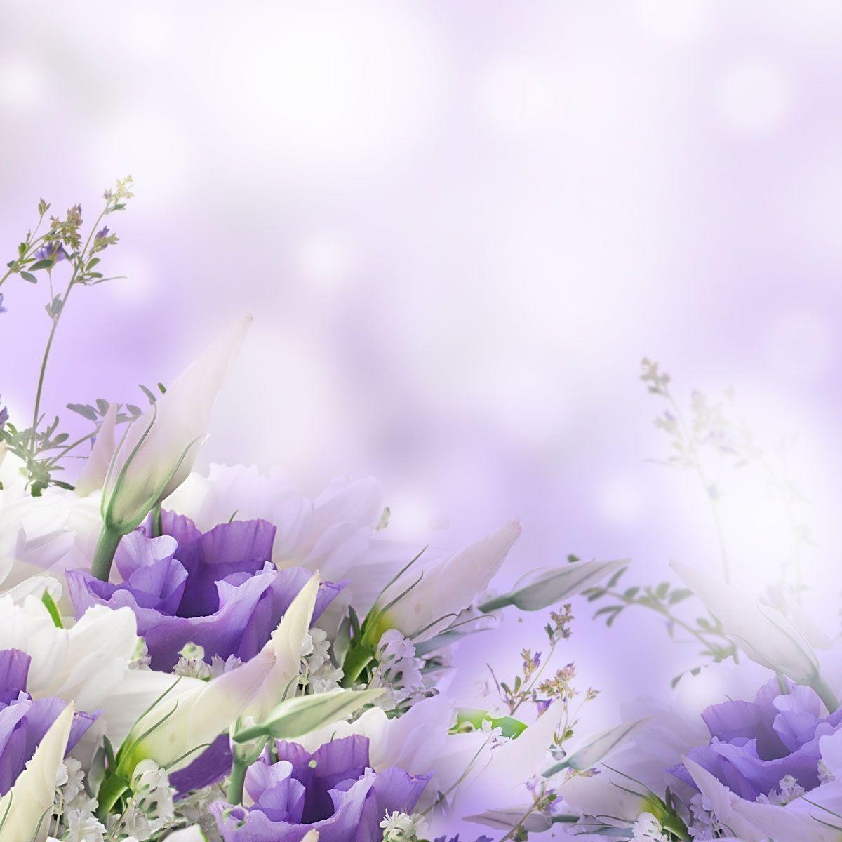 Funeral Backgrounds Pictures
