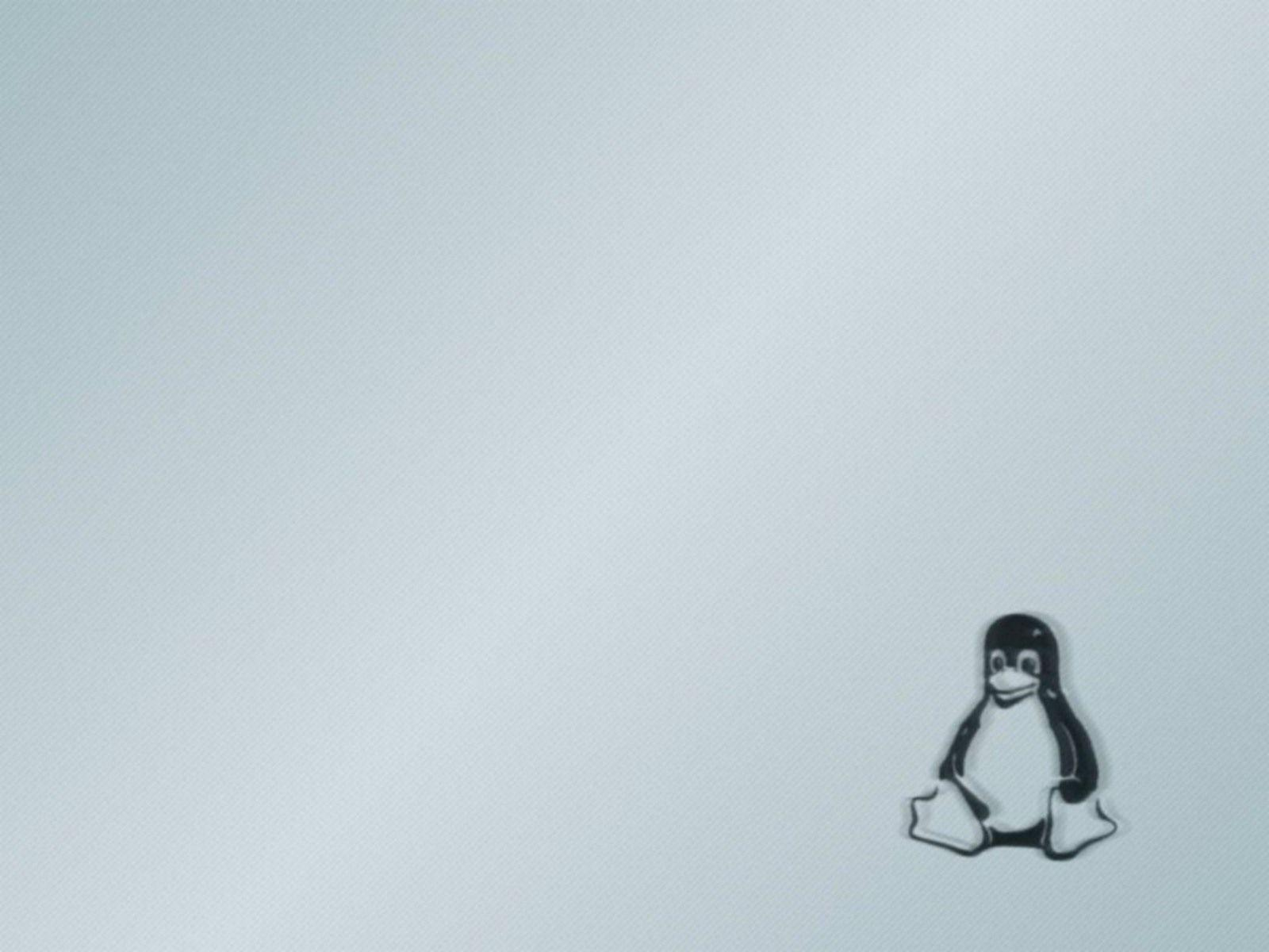 Wallpapers For > Linux Penguin Wallpaper
