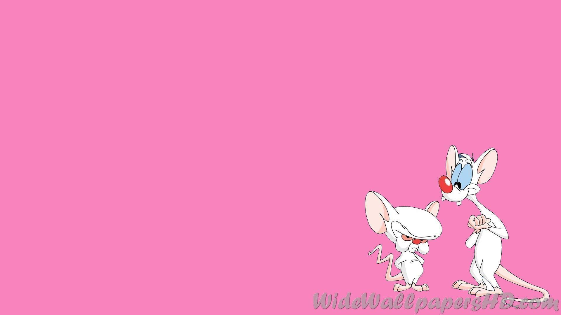 Pinky Wallpapers - Wallpaper Cave