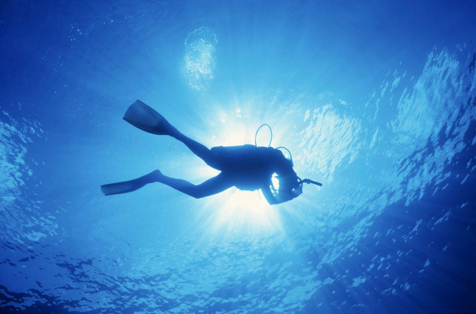 scuba diving wallpaper wallpapers - photo #5