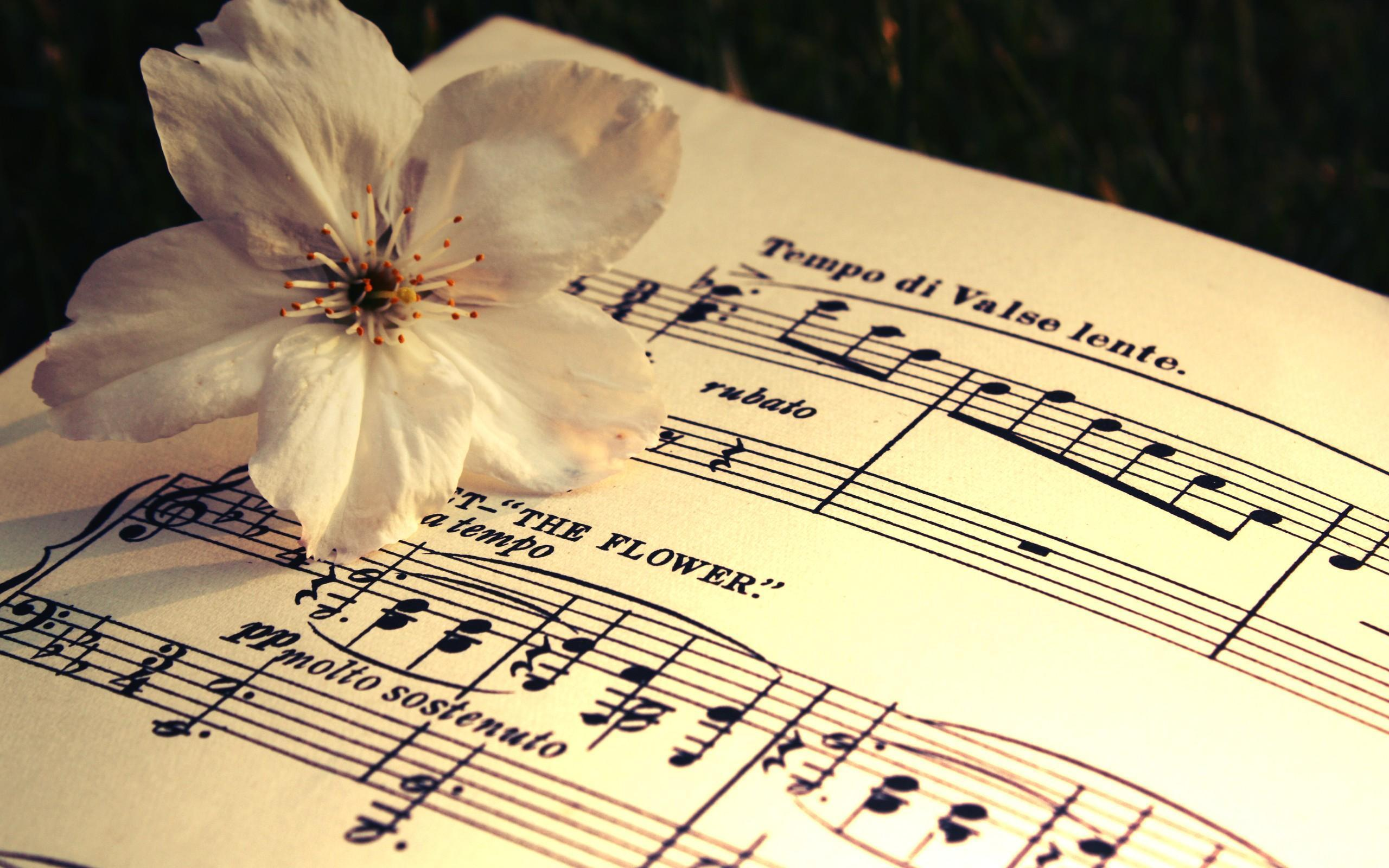 sheet music 2 wallpaper - photo #21