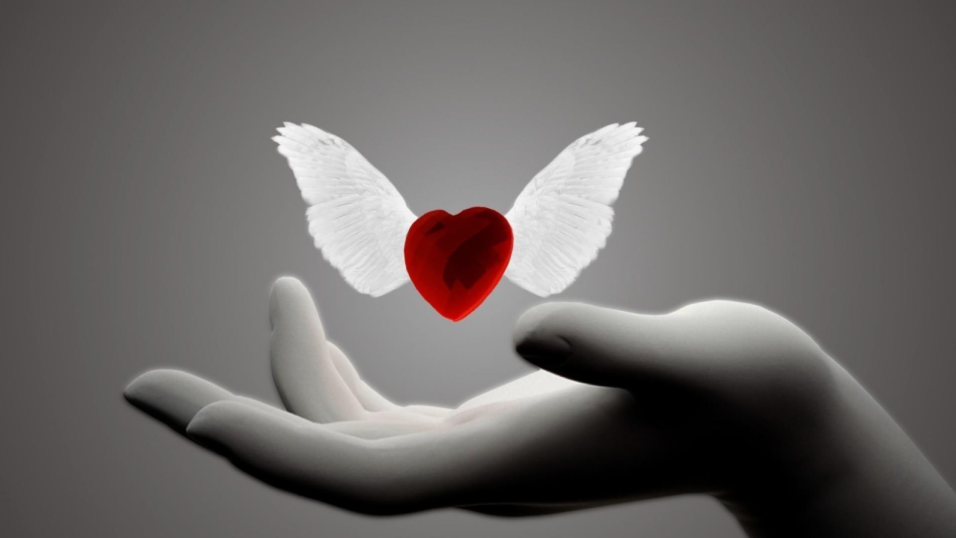 Wallpaper download love hd - Loving Heart Background Wallpaper Hd