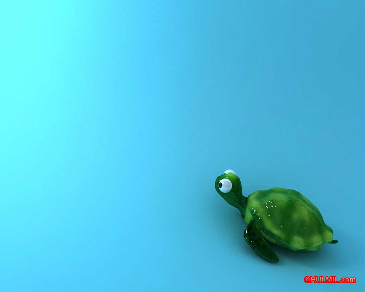 Cute Turtle Wallpapers Wallpaper Cave