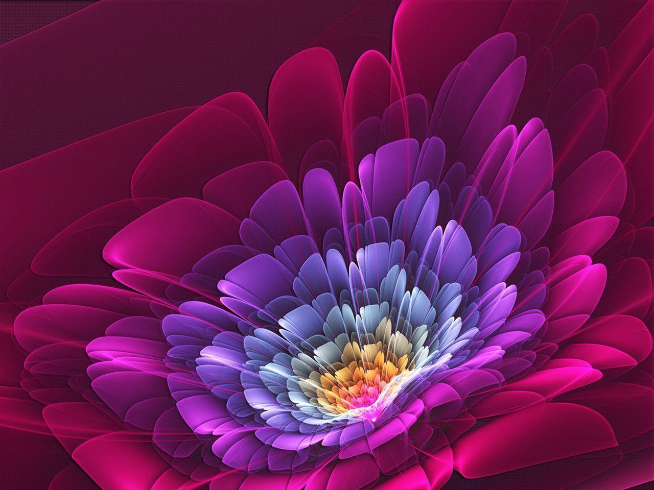 aquarius flower wallpaper hd - photo #29