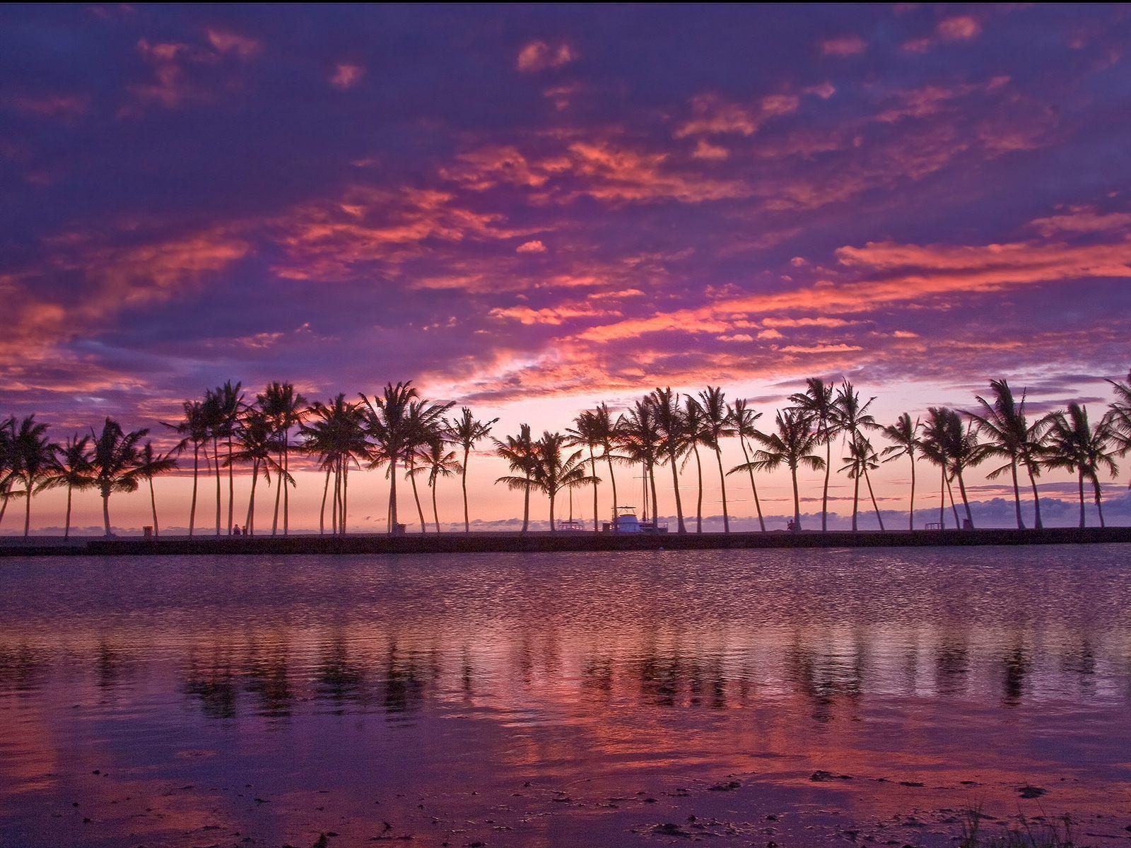 Mirrors Hawaiian Pond Hawaii Wallpapers