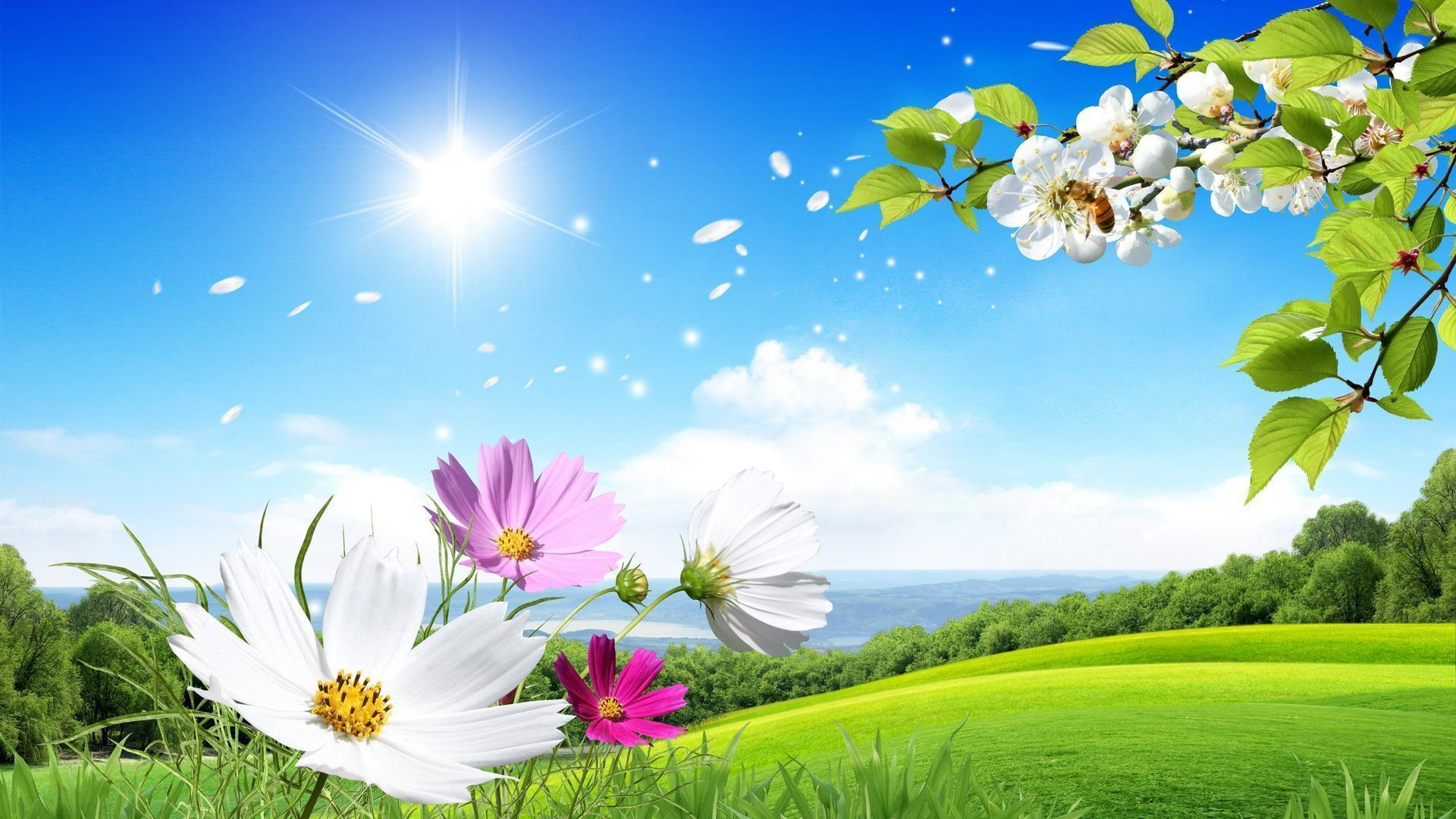 Beautiful flower backgrounds wallpaper cave beautiful flower scenery background 1 hd wallpapers natureimgz izmirmasajfo