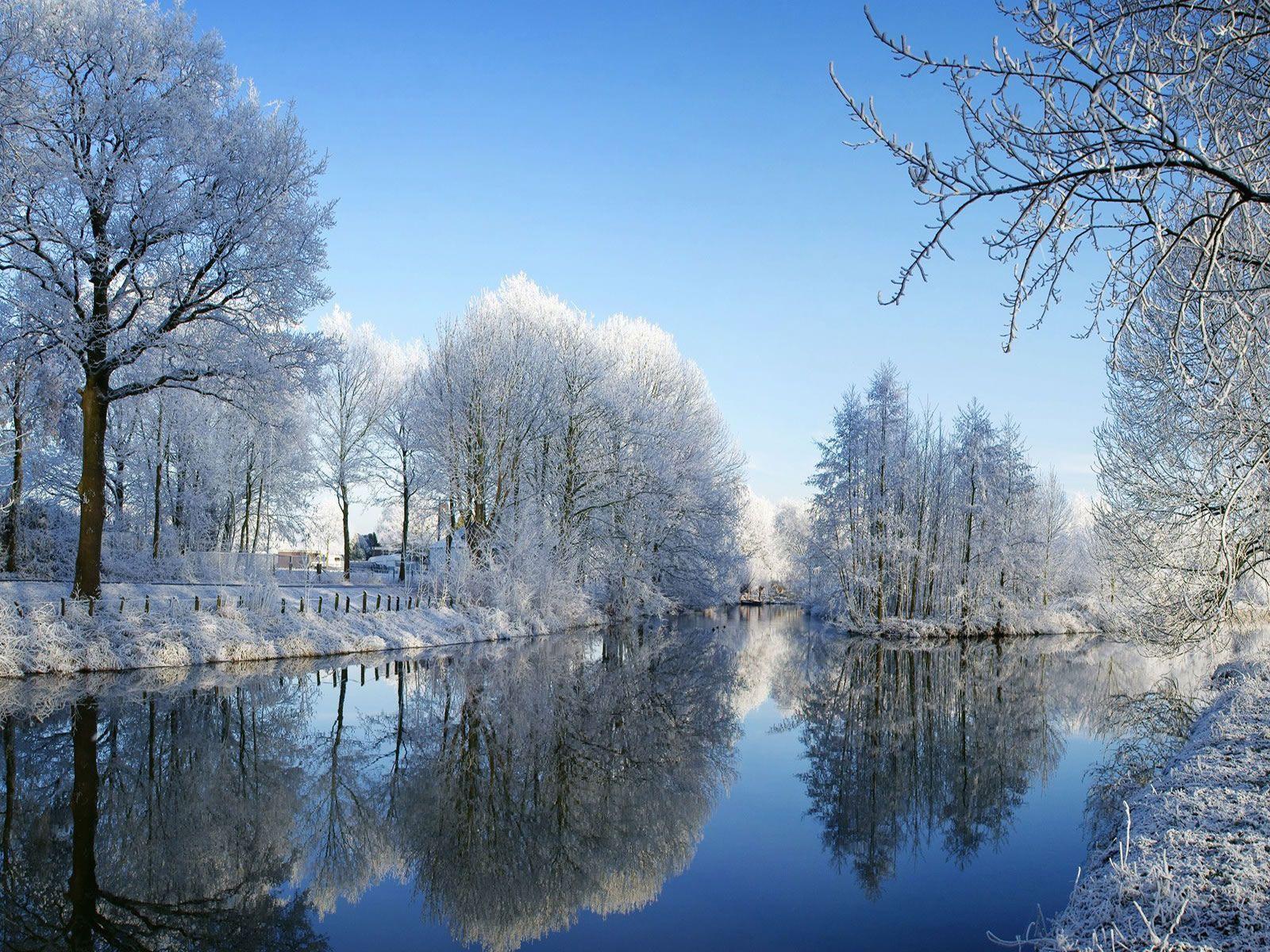 winter Wallpaper Backgrounds