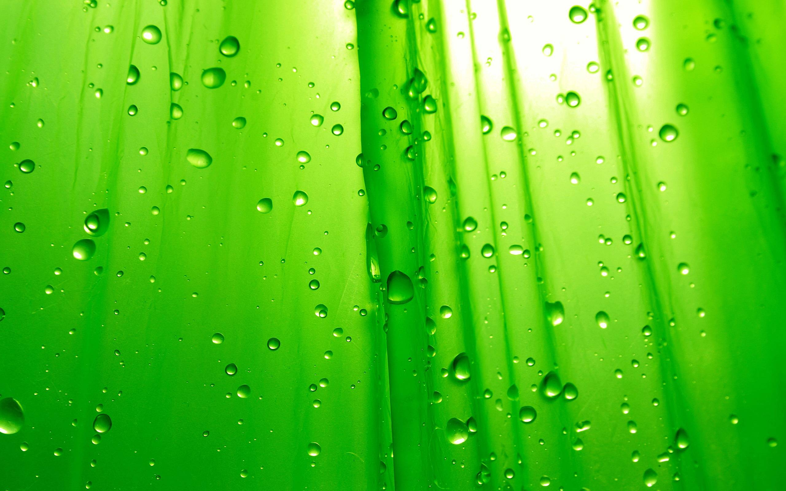 Go Green Wallpaper Free