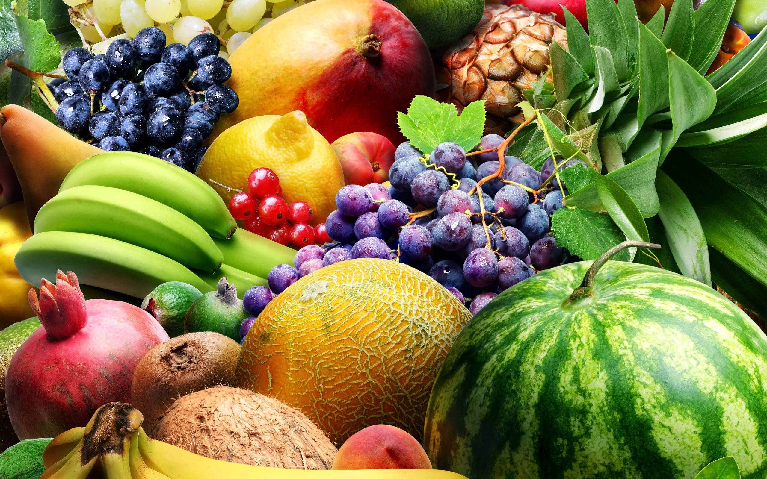 Wallpaper hd fruits - 336 Fruit Wallpapers Fruit Backgrounds Page 4