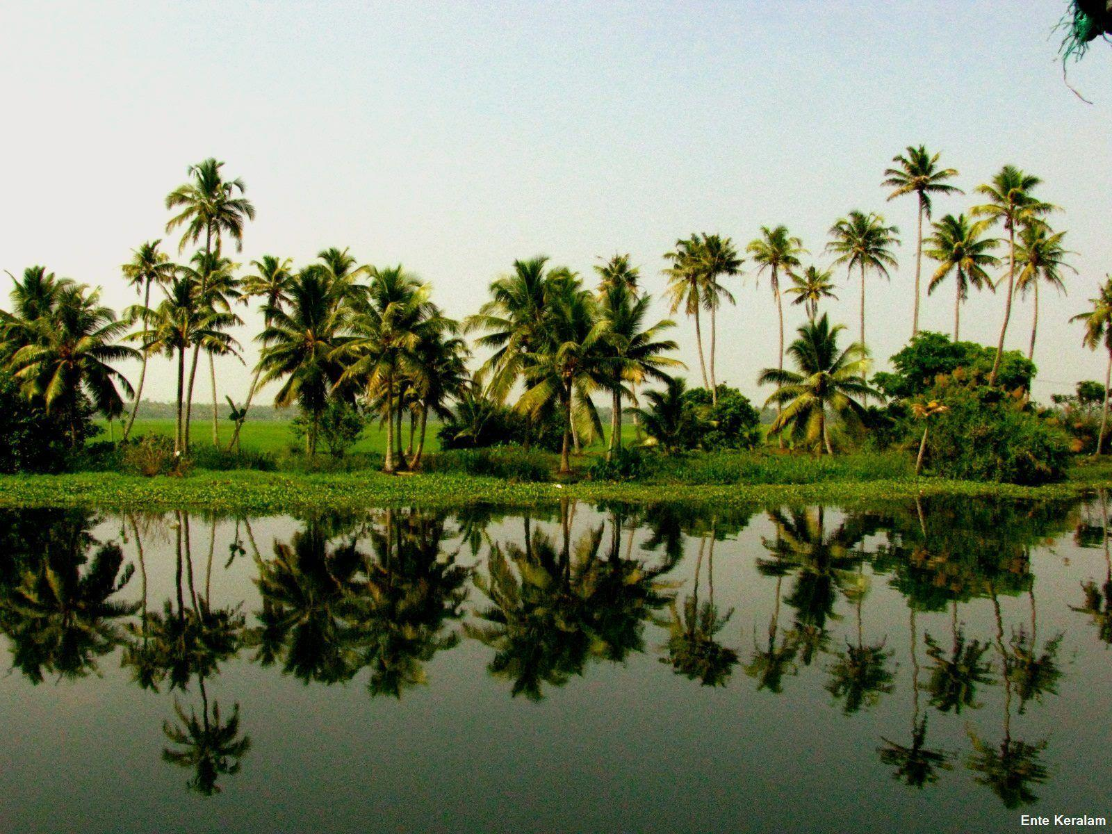 Kerala Wallpapers Wallpaper Cave