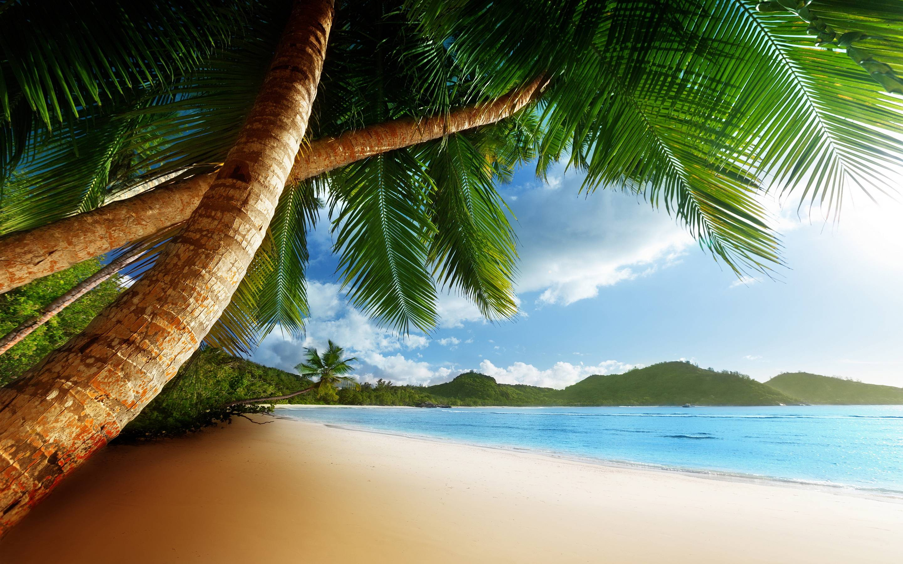10 Best Tropical Beach Desktop Backgrounds Full Hd 1920: Free Caribbean Beach Wallpapers