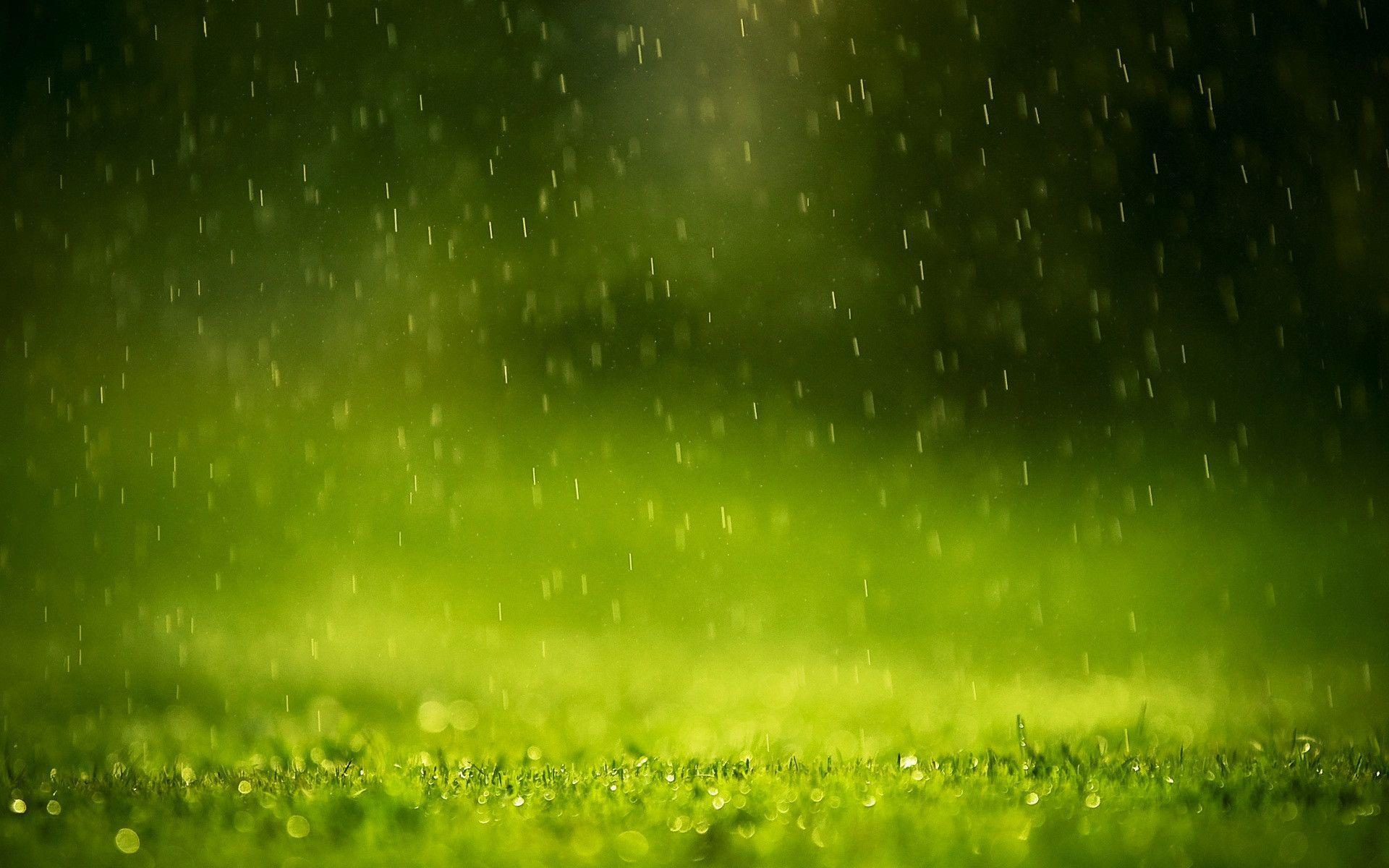 Rain Drops Wallpapers | HD Wallpapers