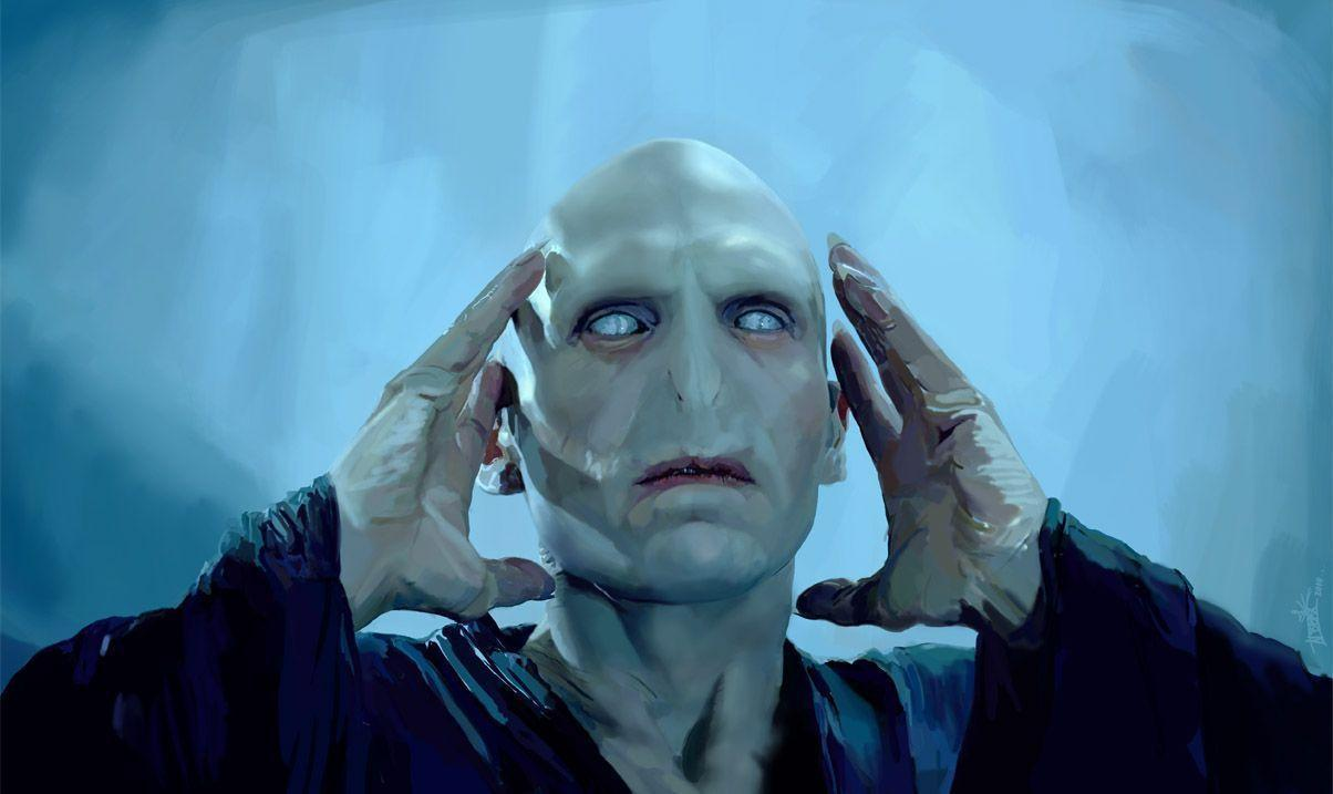 compare contrast harry potter lord voldemort