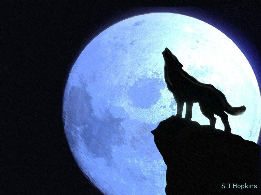 how to draw wolves howling at the moon viewing gallery