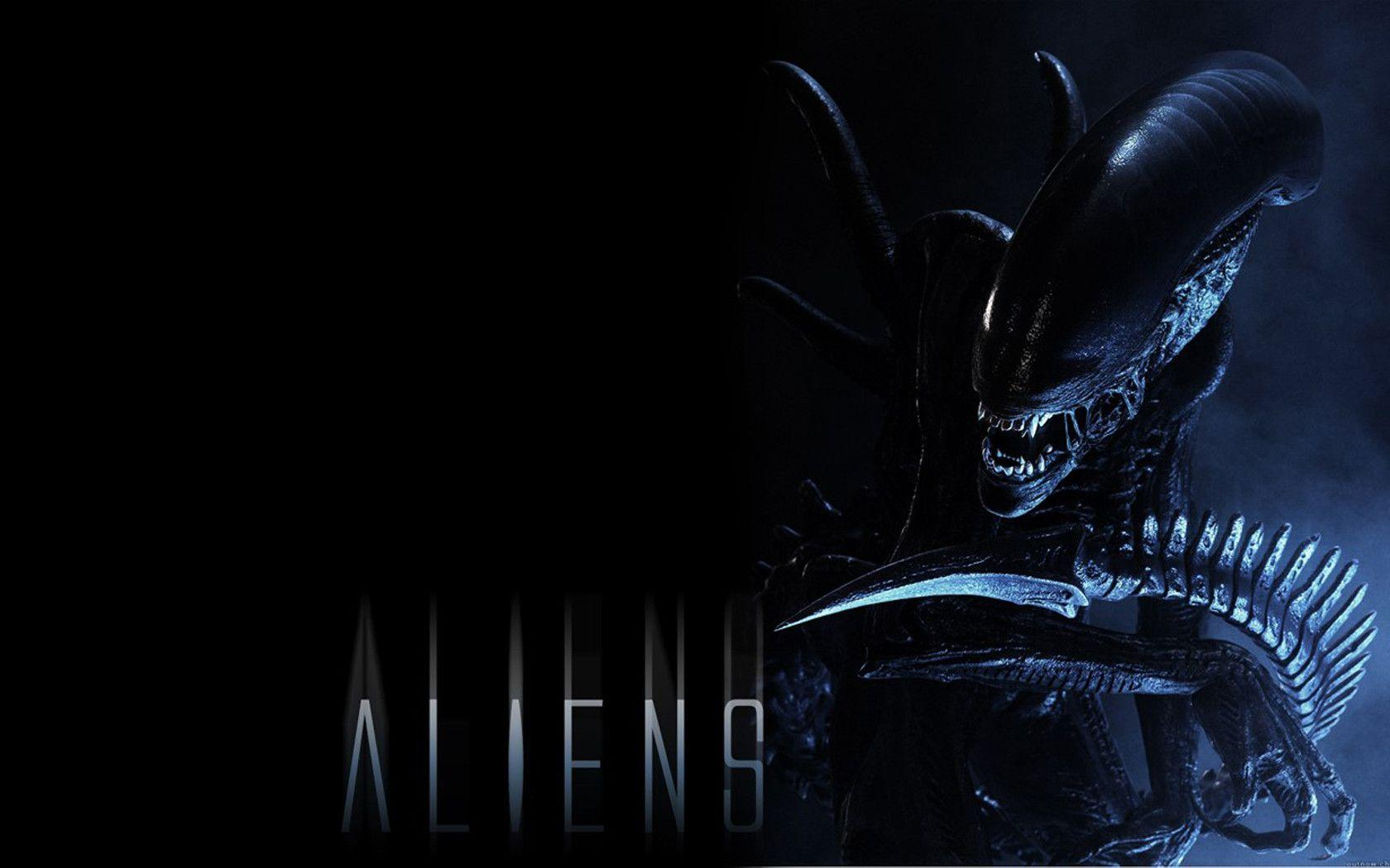 Alien Wallpaper 2 By Spitfire666xXxXx On DeviantArt