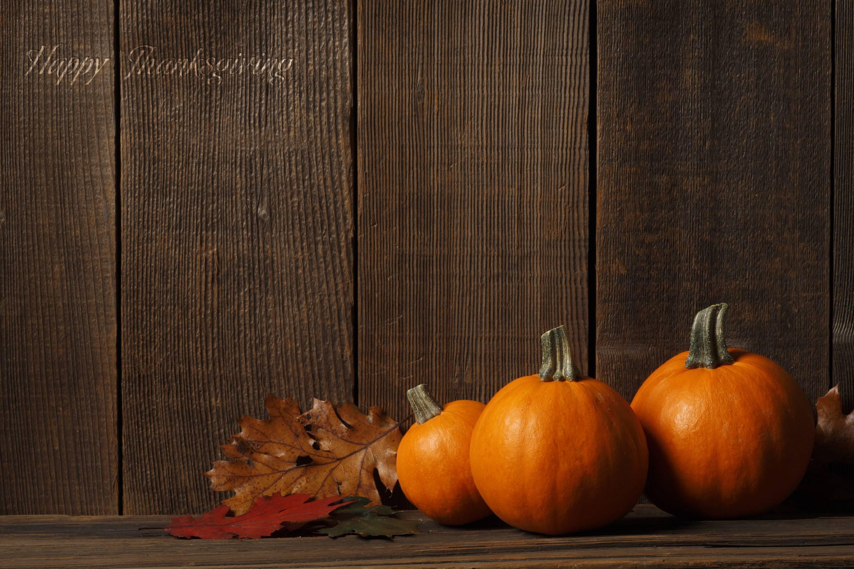 wallpaper roundup turkey time and pumpkin pie