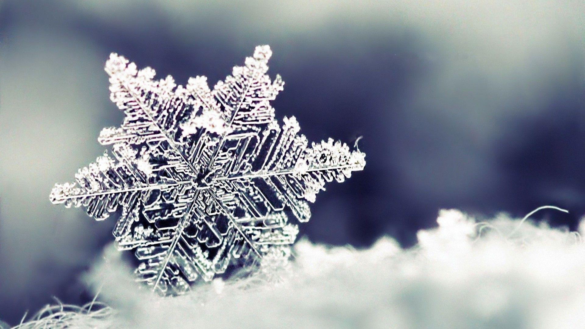 real snowflakes background - photo #15
