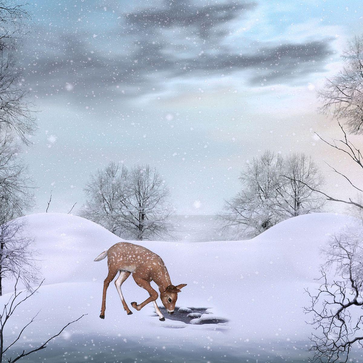 Winter Wallpaper: Cute Winter Backgrounds