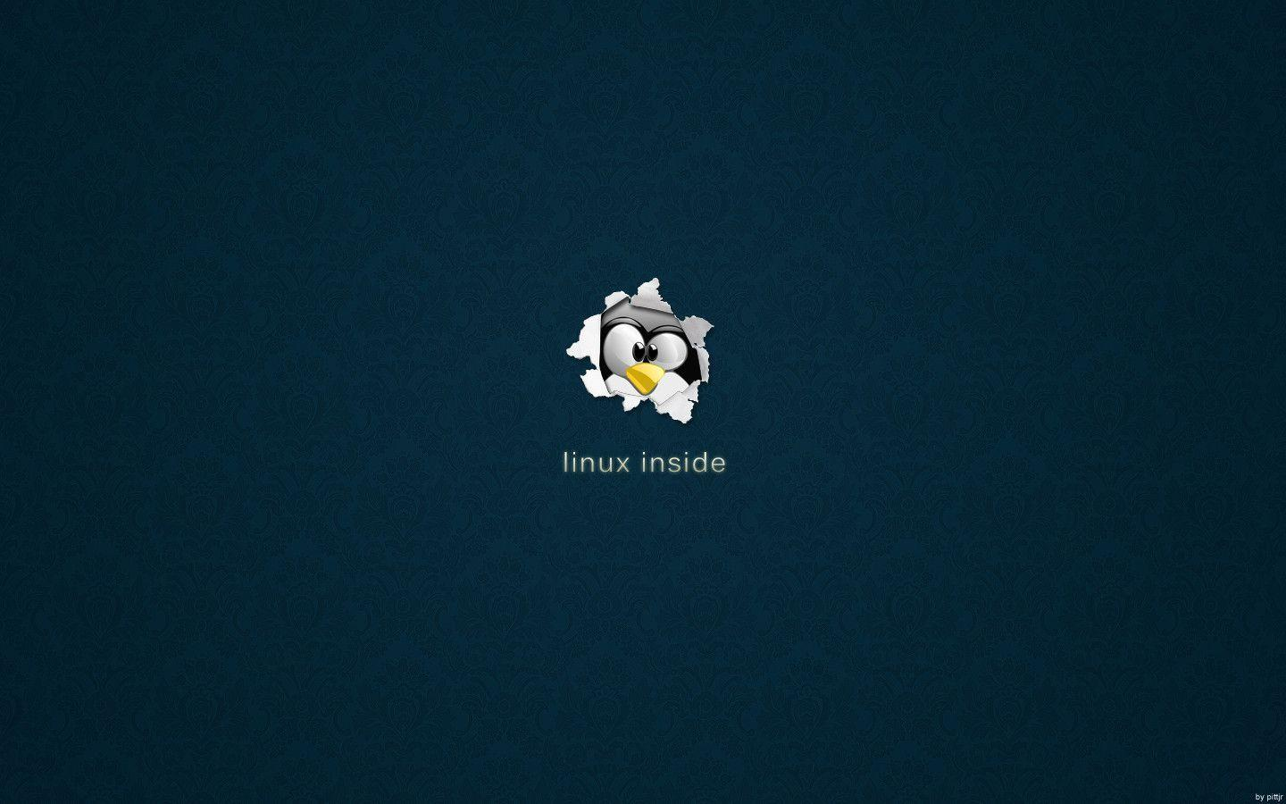 Wallpapers For > Linux Penguin Wallpaper 1920x1080