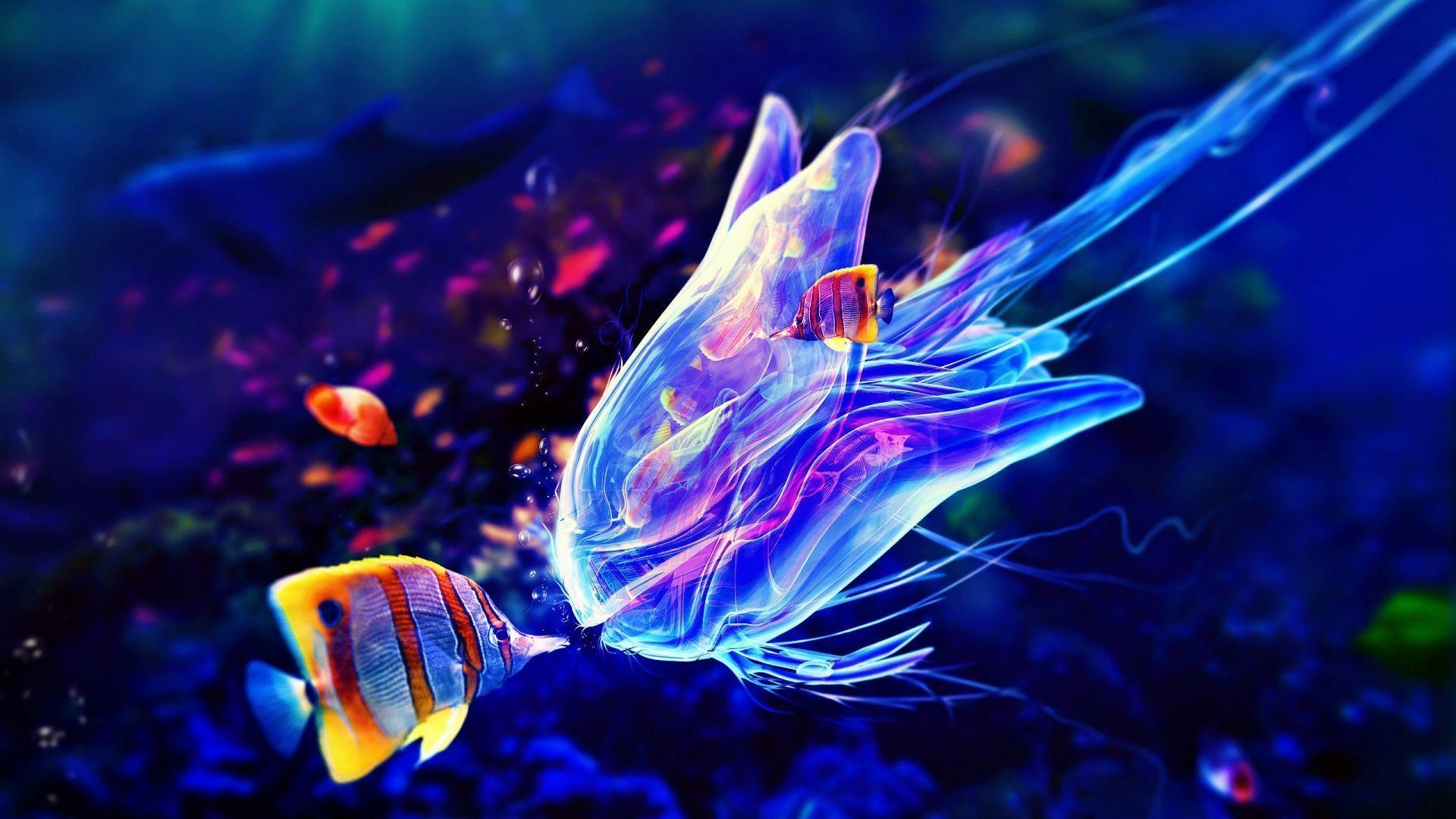 Jelly Fish Wallpapers - Wallpaper Cave