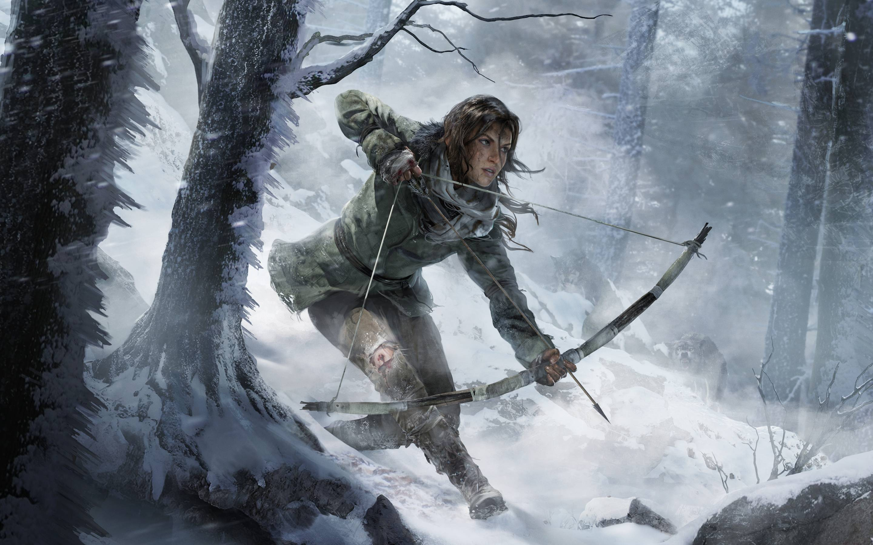 Download Rise Of The Tomb Raider 2015 Game HD Resolutions Image