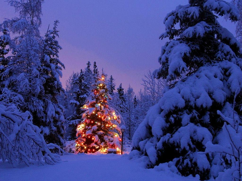 Christmas Snow Scene Wallpapers Desktop