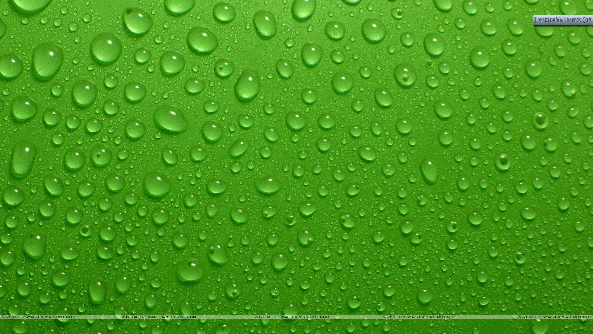 Green Backgrounds 19 Desktop Backgrounds
