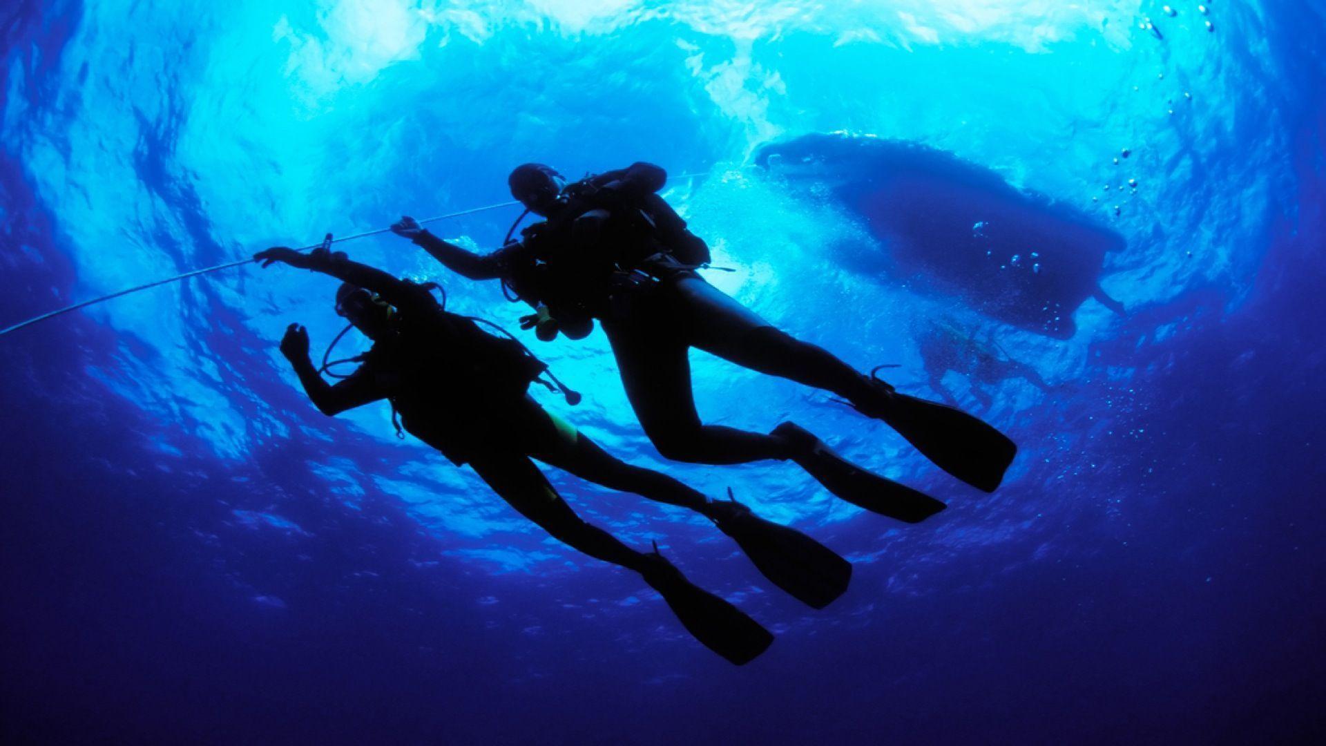 scuba diving wallpaper wallpapers - photo #8