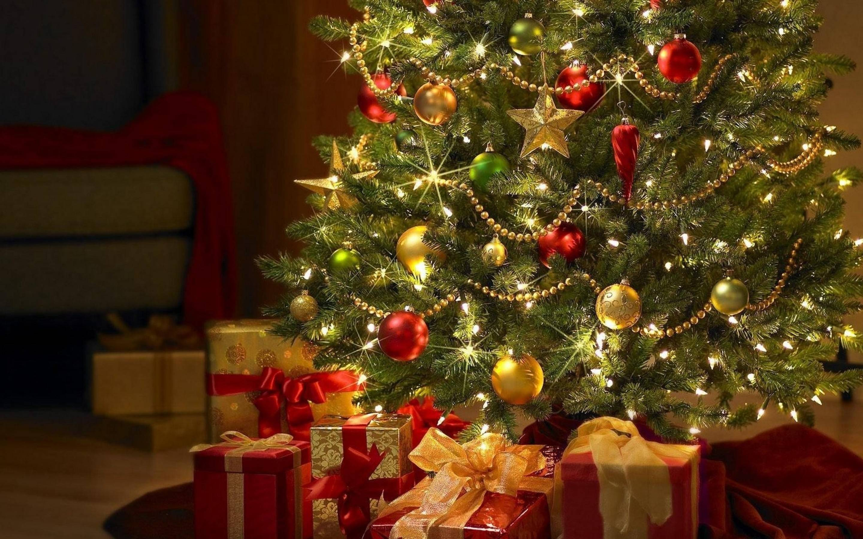 50 Beautiful Christmas tree Wallpapers