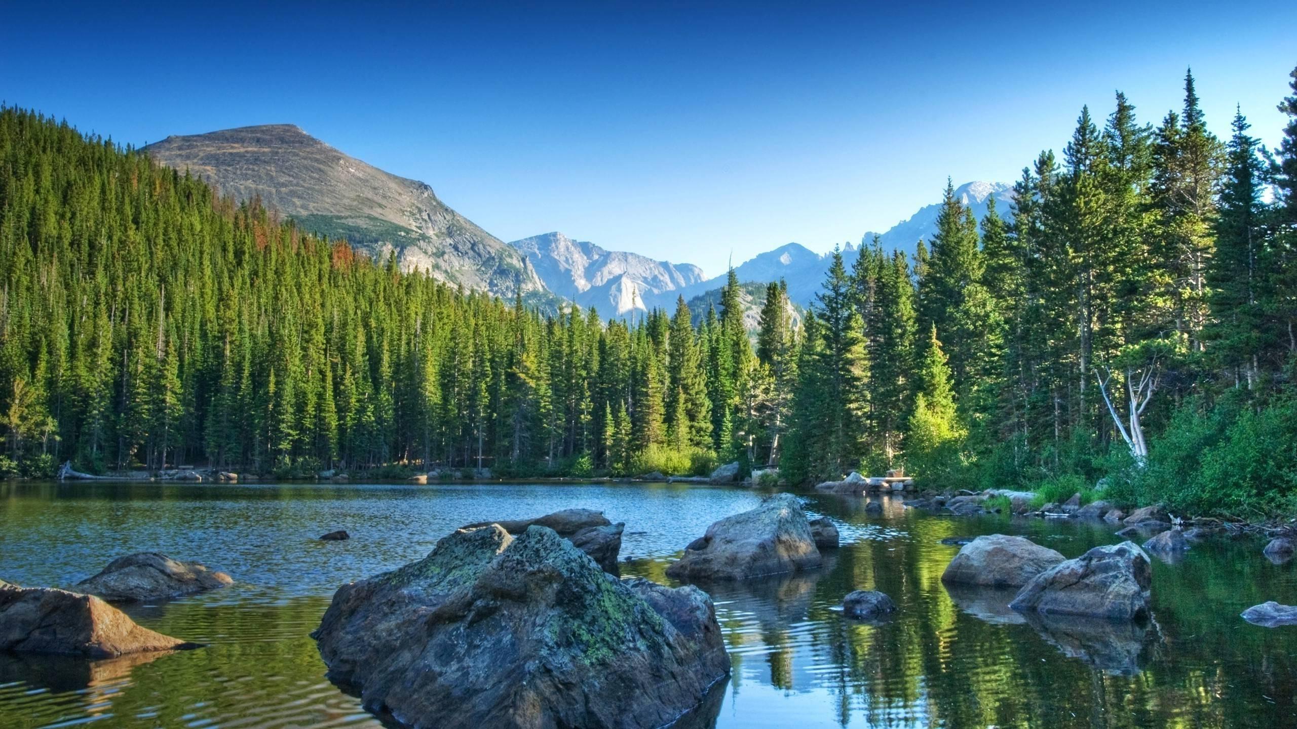 bear lake rocky mountain national park wallpaper