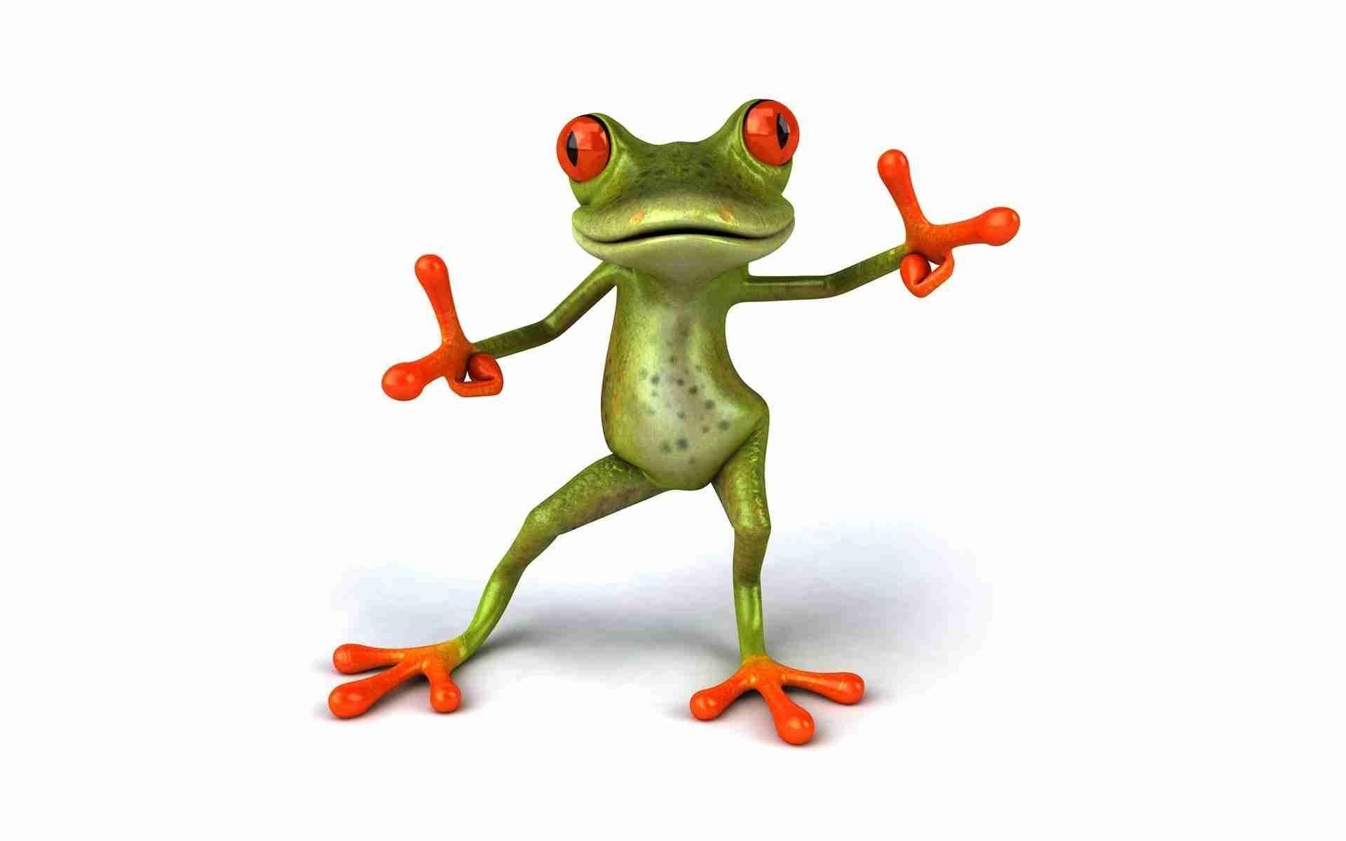 Bildresultat för funny frog