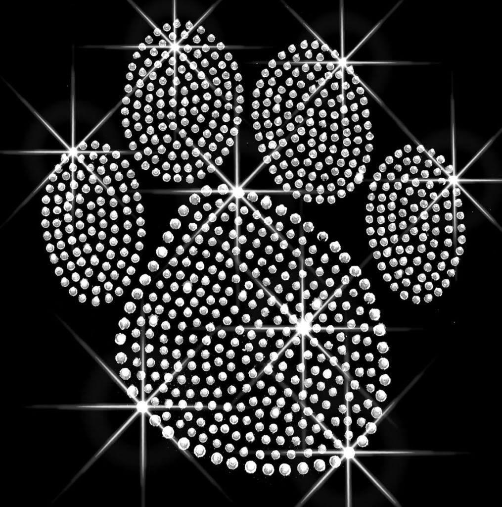 Paw Prints Wallpapers - Wallpaper Cave
