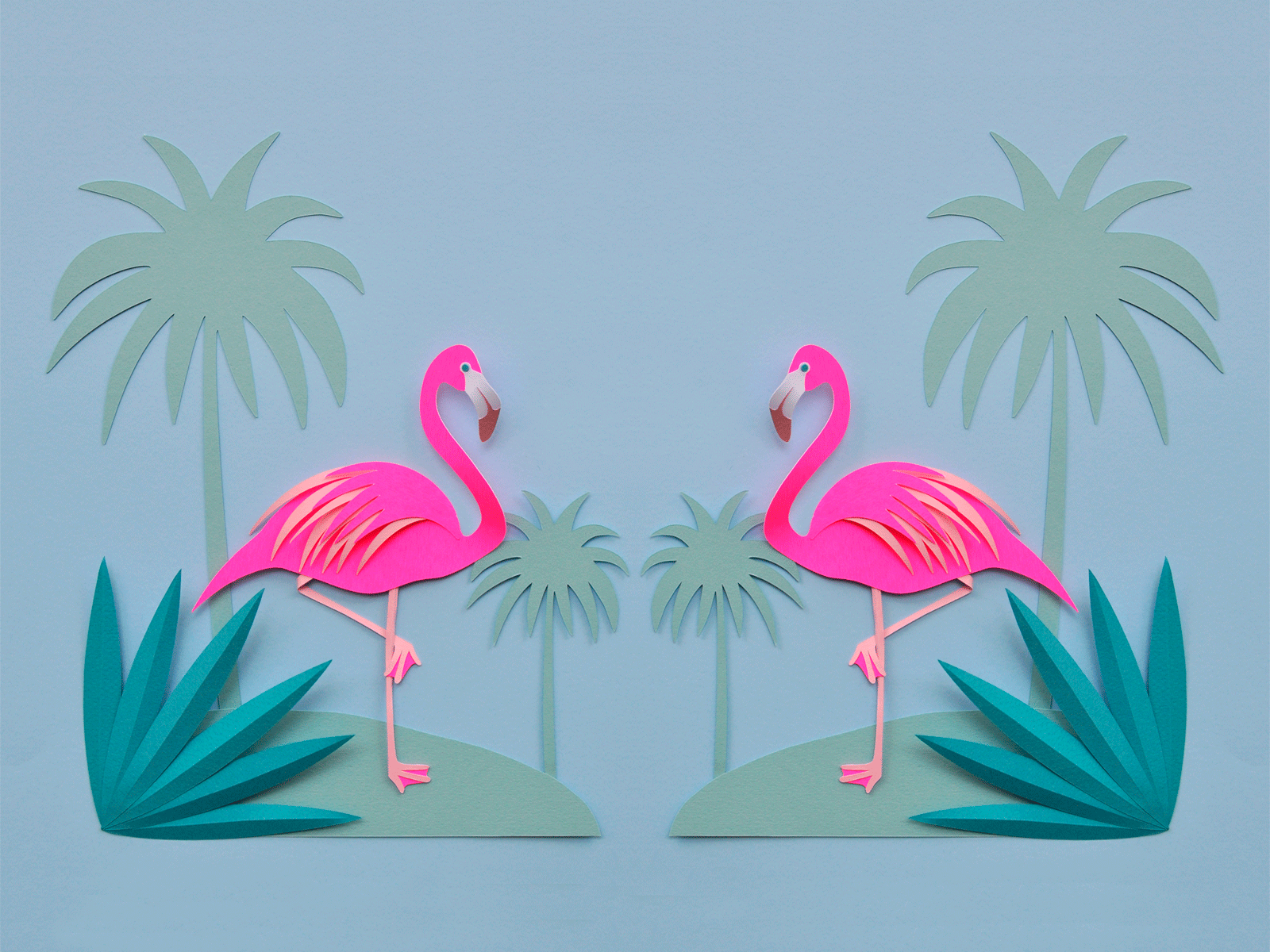 blue flamingo wallpapers Animal