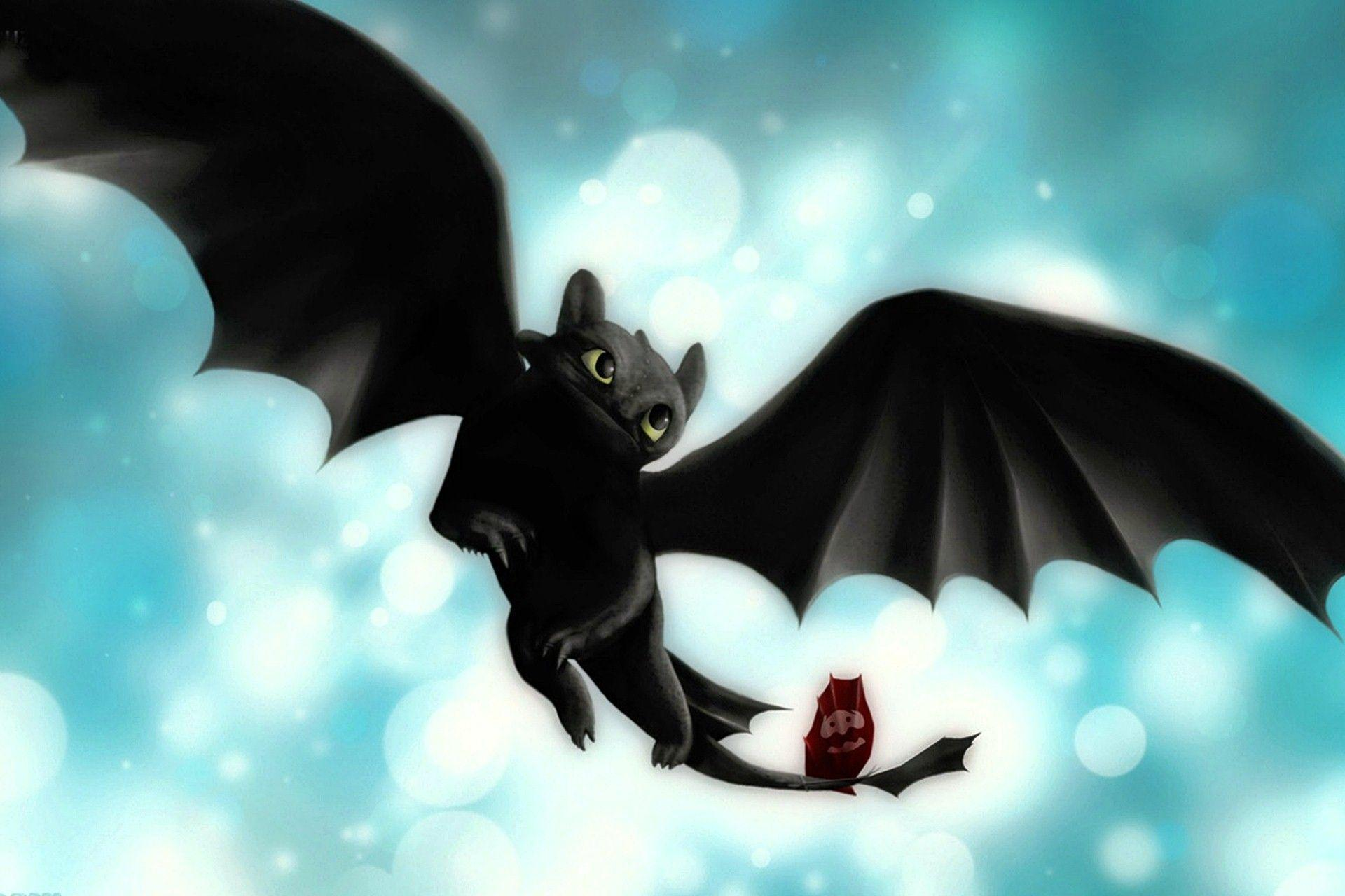 Toothless How To Train Your Dragon Wallpapers