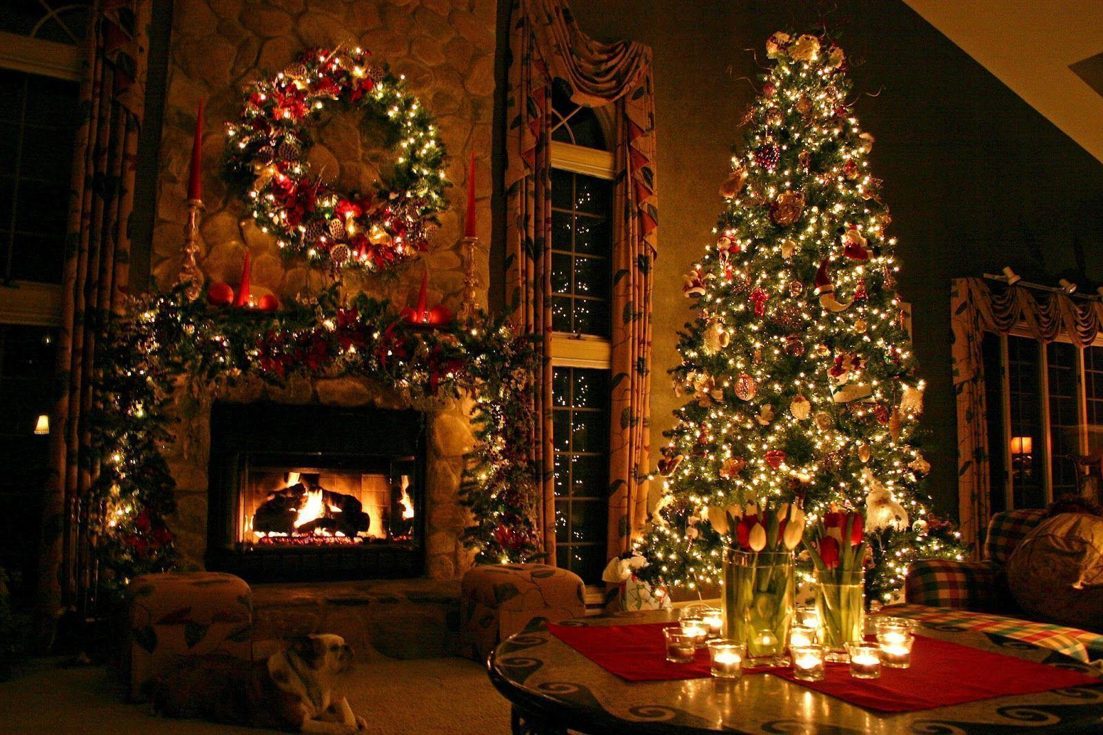 Public christmas trees wallpapers