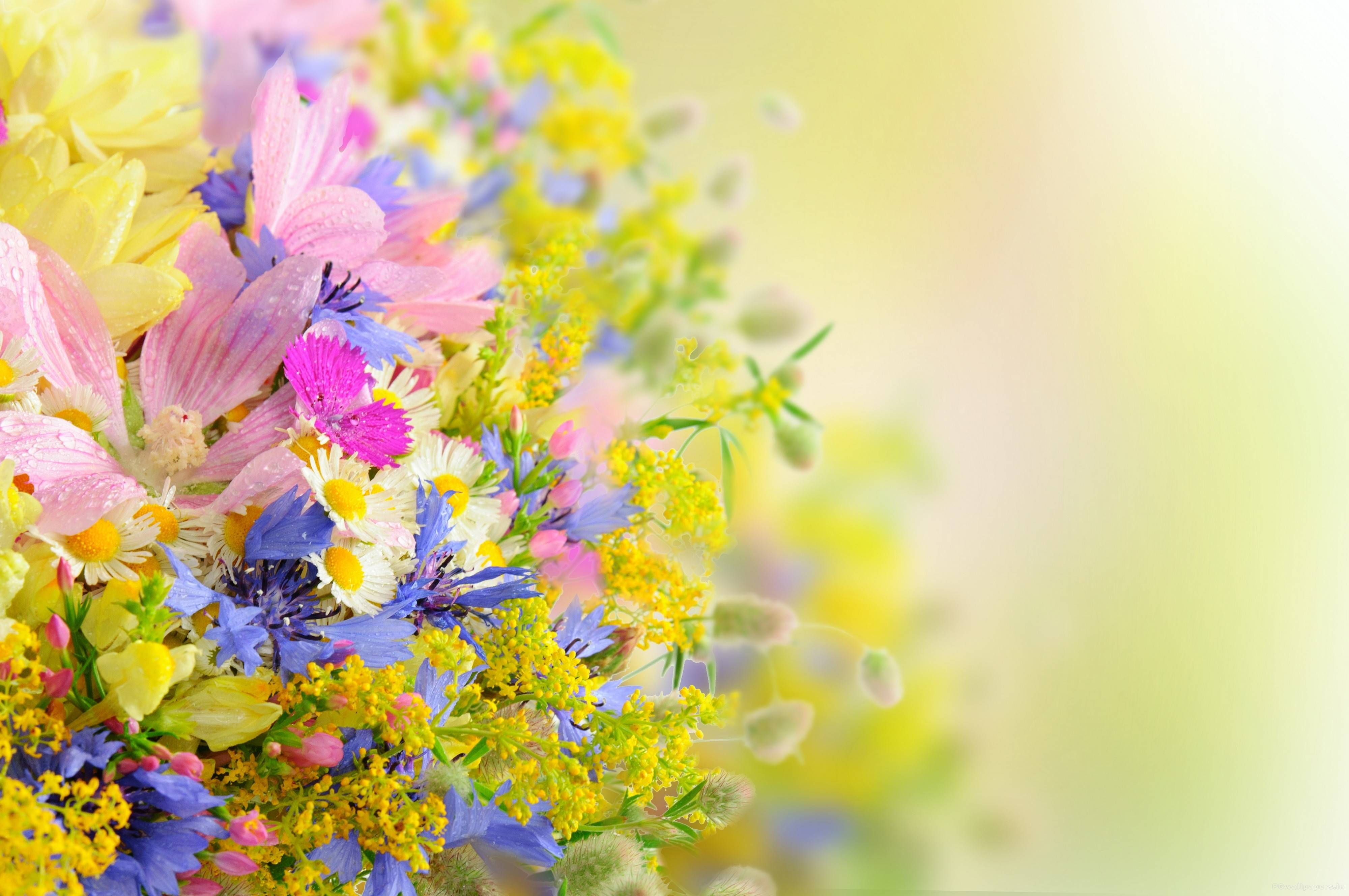 Backgrounds Of Flowers Wallpaper Cave