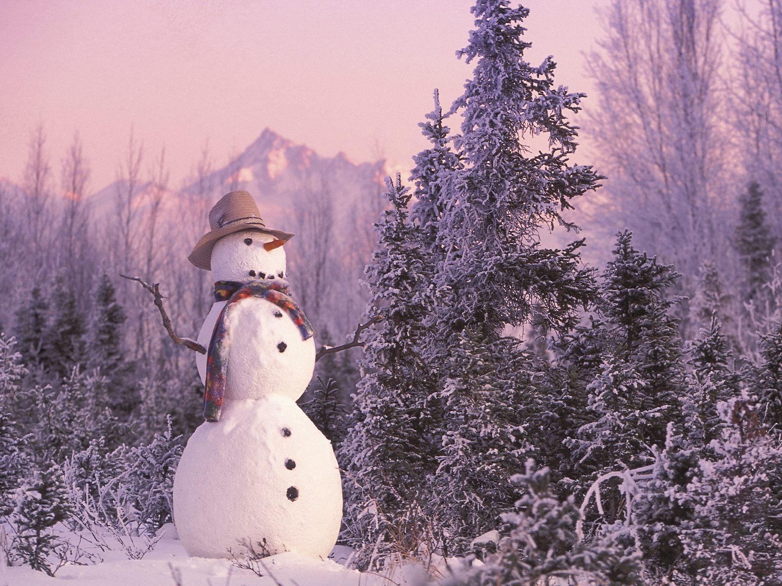 tag snowman desktop wallpapers - photo #40