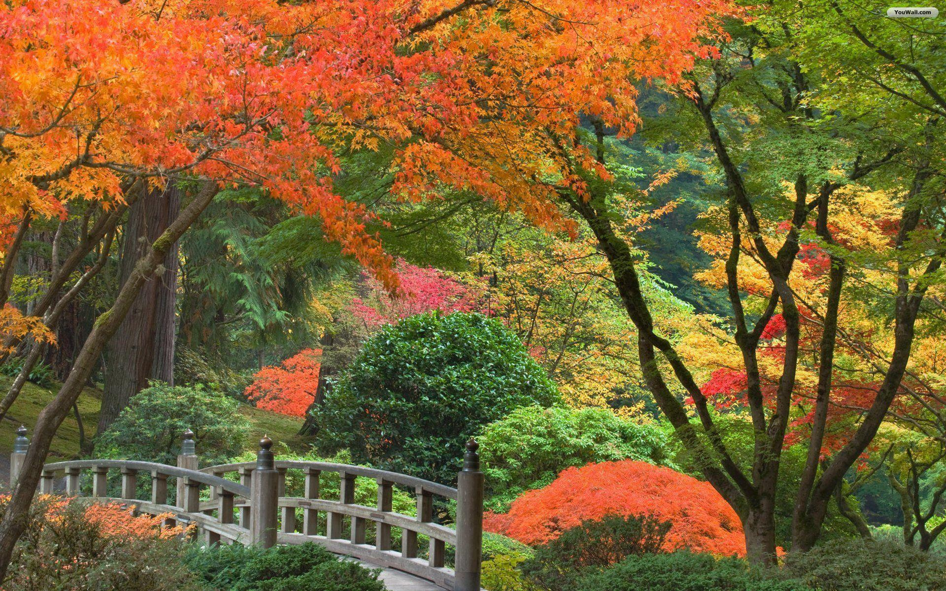 Japanese Garden Wallpapers: Japanese Garden Desktop Wallpapers