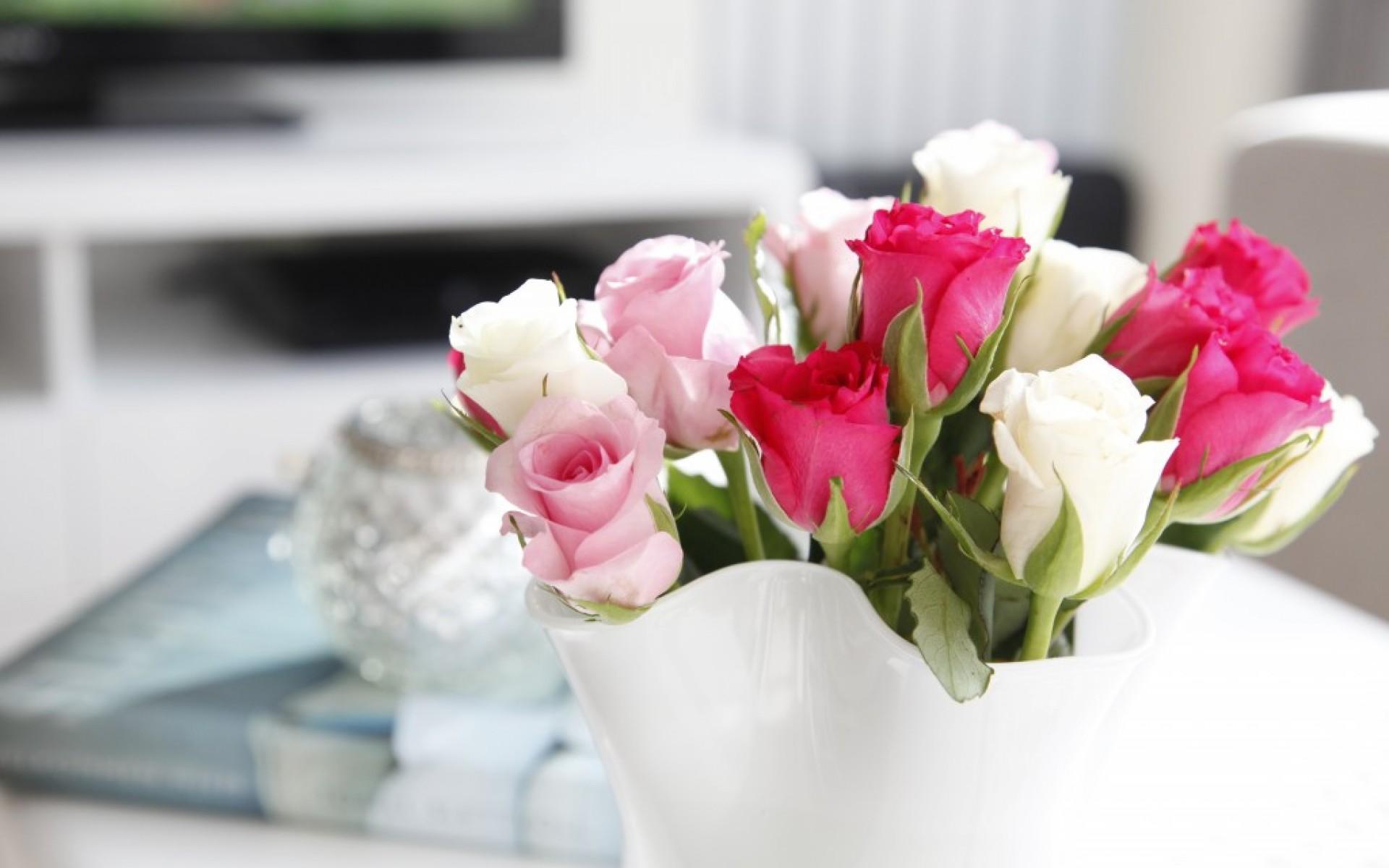 Hd wallpaper rose - White Rose Wallpapers Full Hd Wallpaper Search