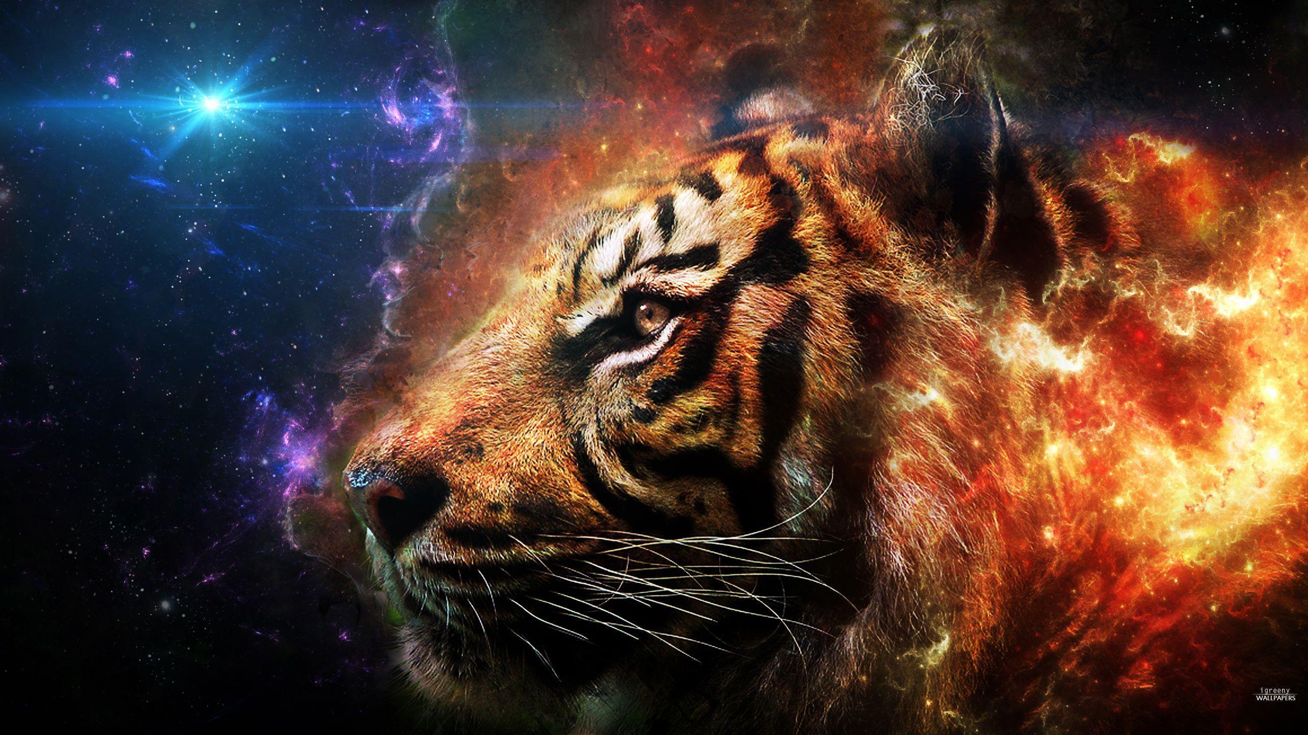Free Wallpapers - Tiger Head 2560x1440 wallpaper