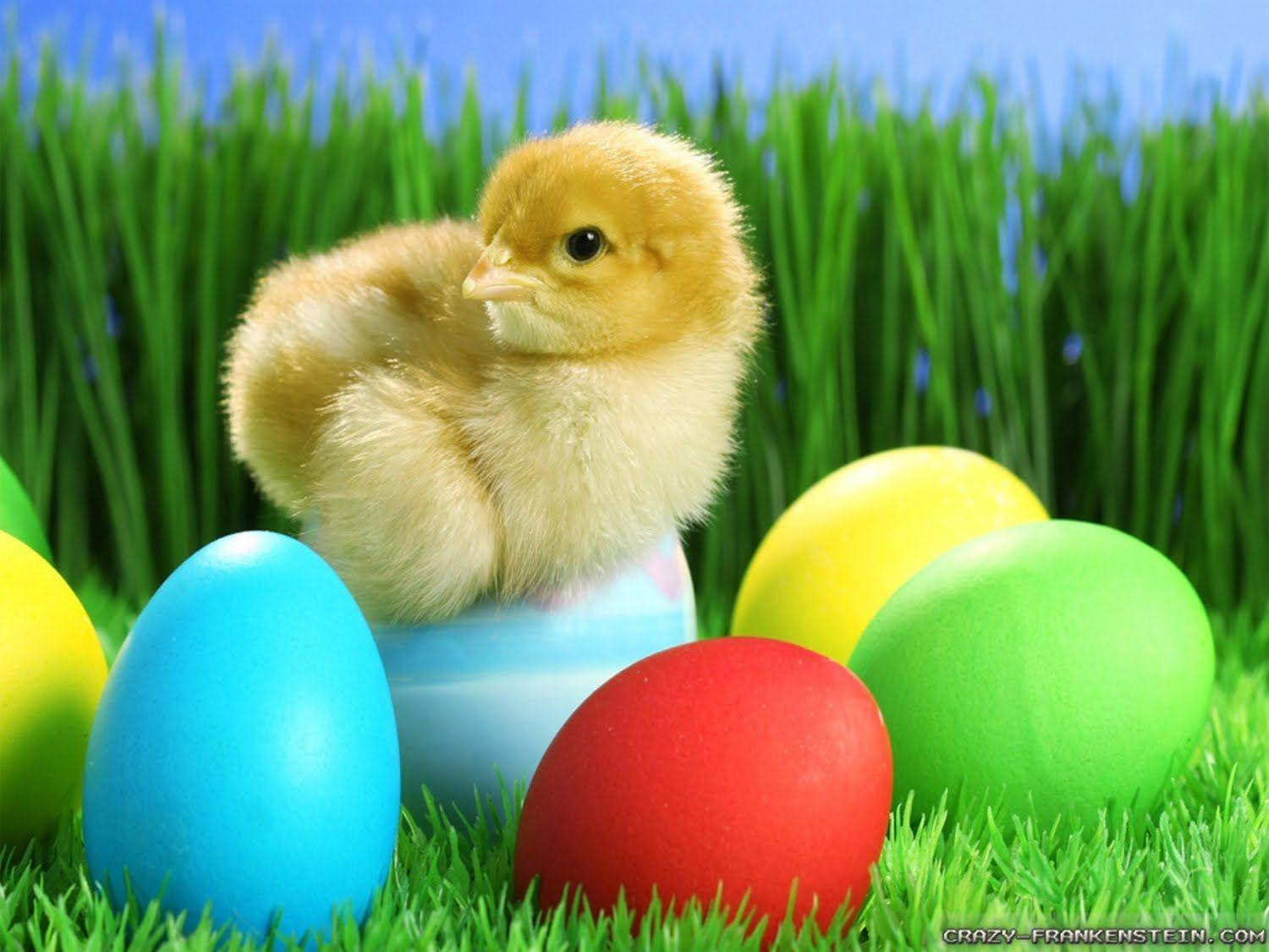 gLaMoRoUs bLoG: Easter Wallpapers